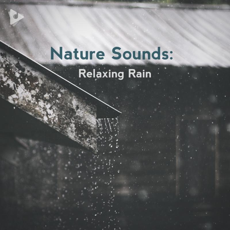 Nature Sounds: Relaxing Rain