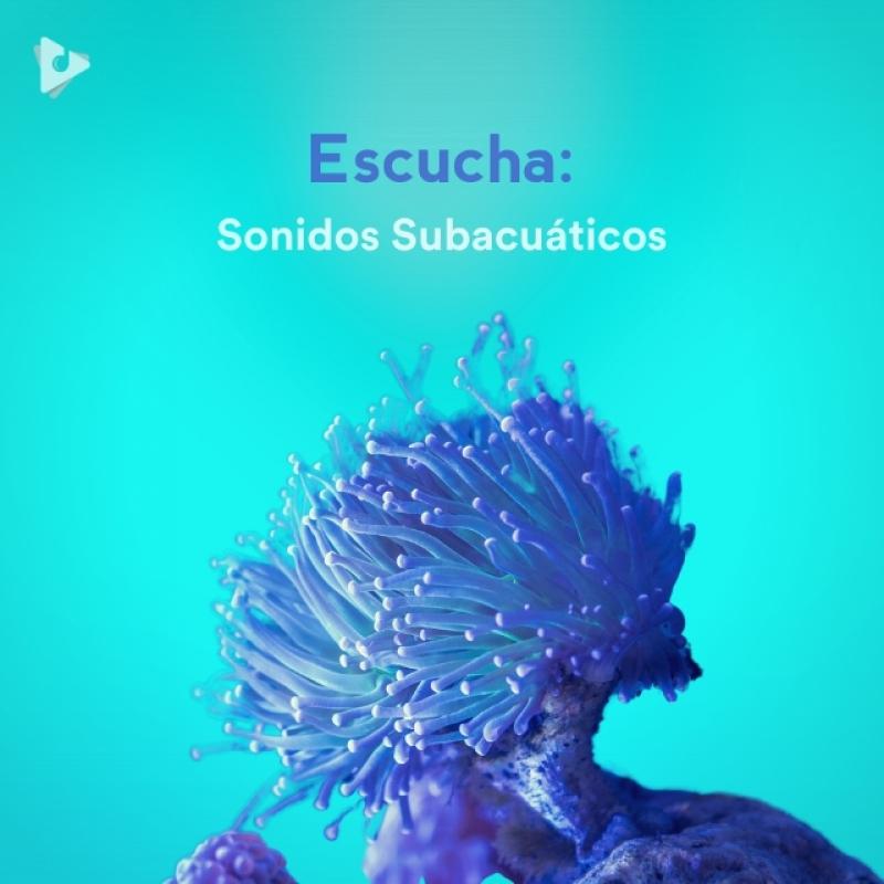 Escucha: Sonidos Subacuáticos