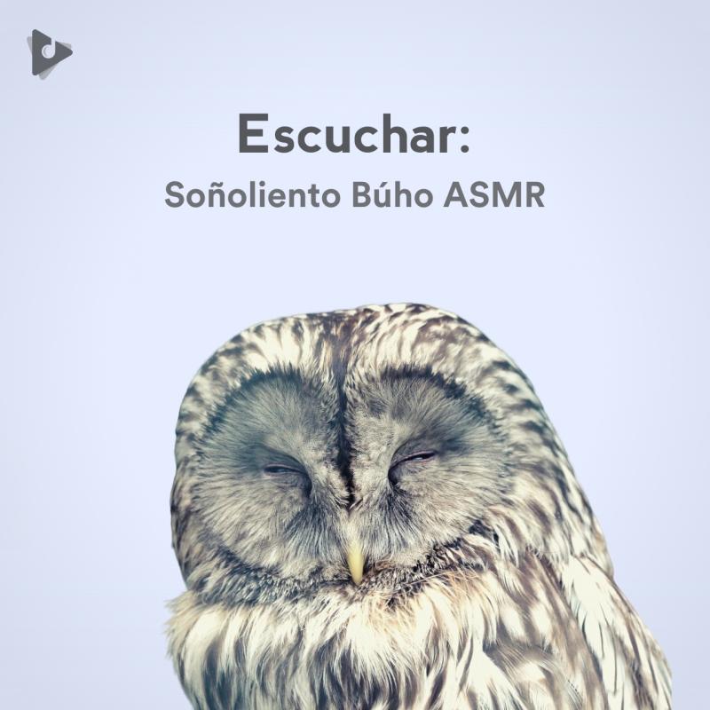 Escuchar: Soñoliento Búho ASMR
