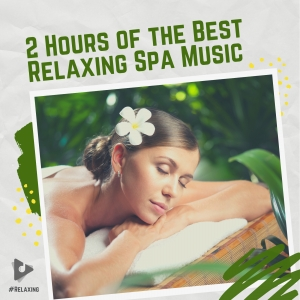 2 Hours of The Best Relaxing Spa Music