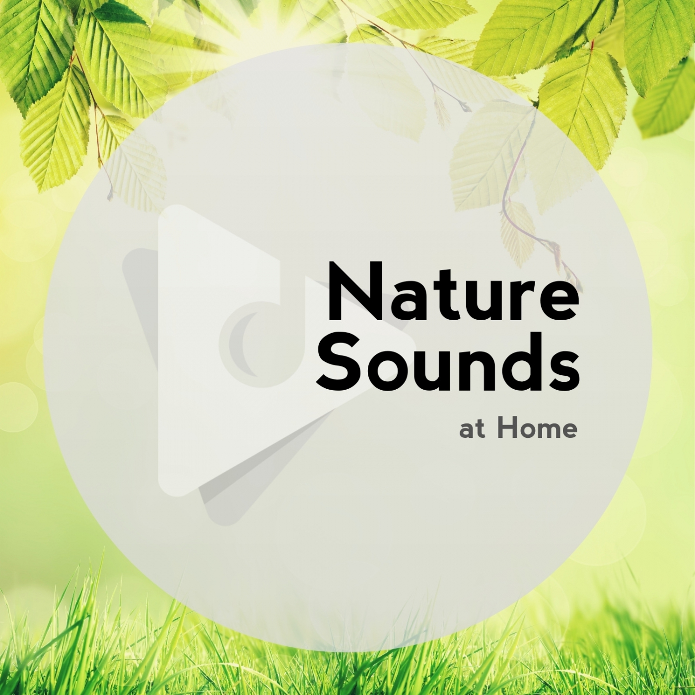 Nature Sounds At Home