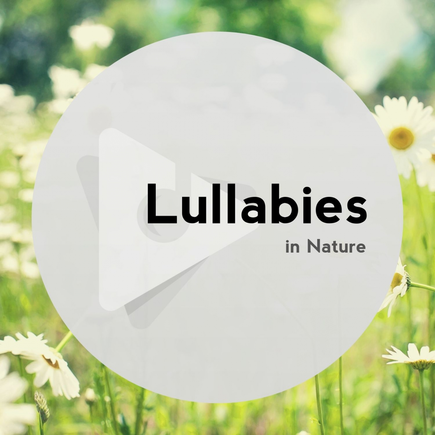Lullabies In Nature