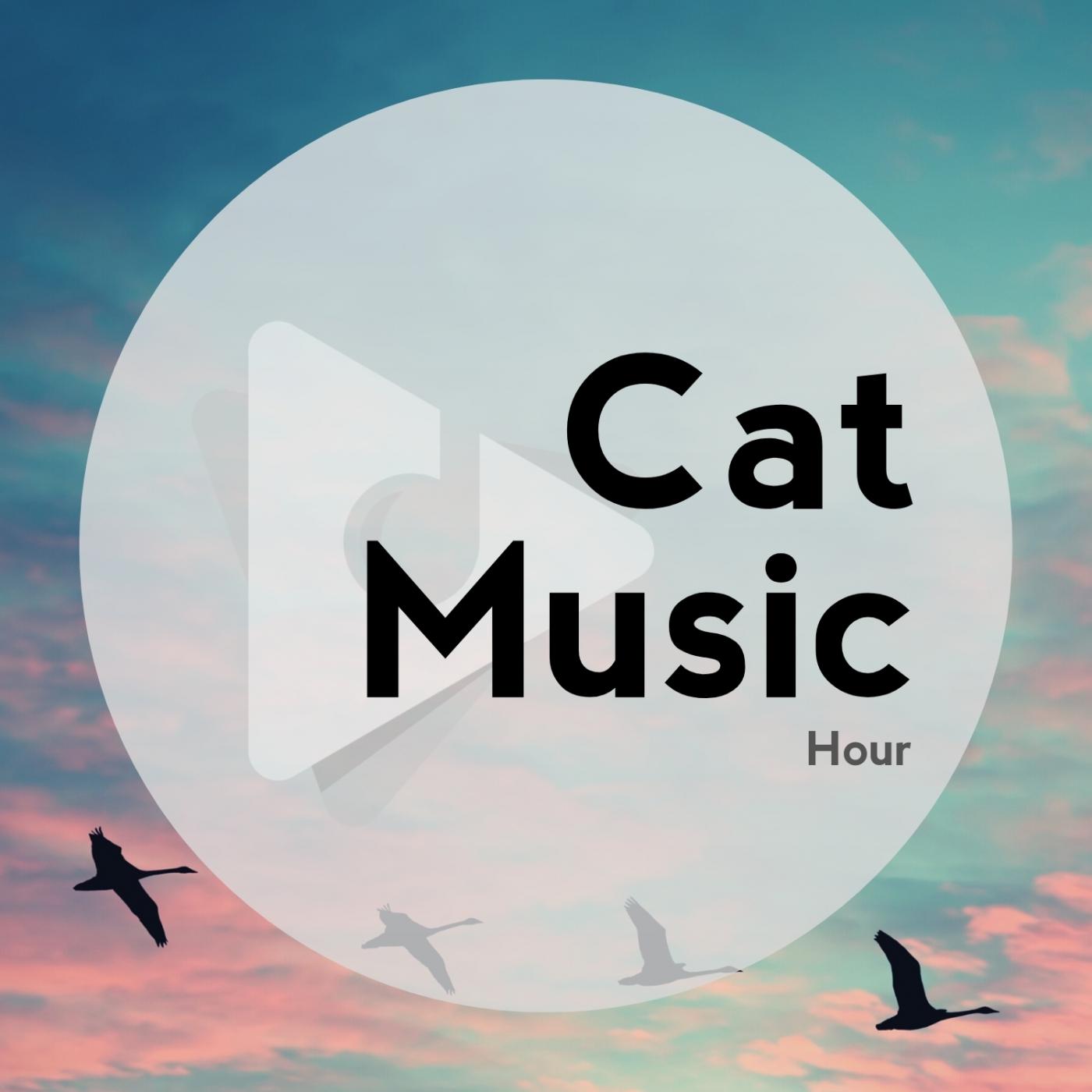 Cat Music Hour