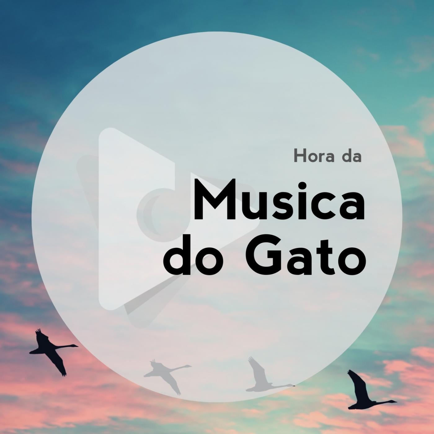 Hora da Música do Gato