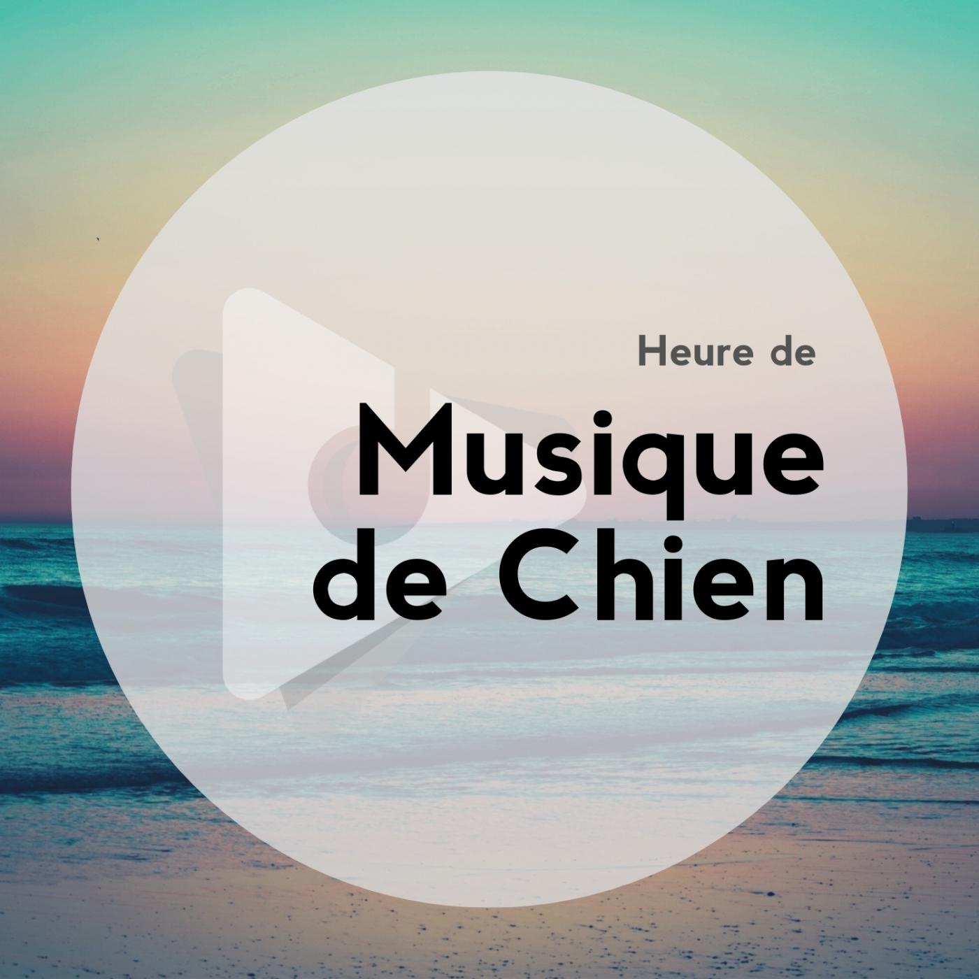 Heure de Musique de Chien