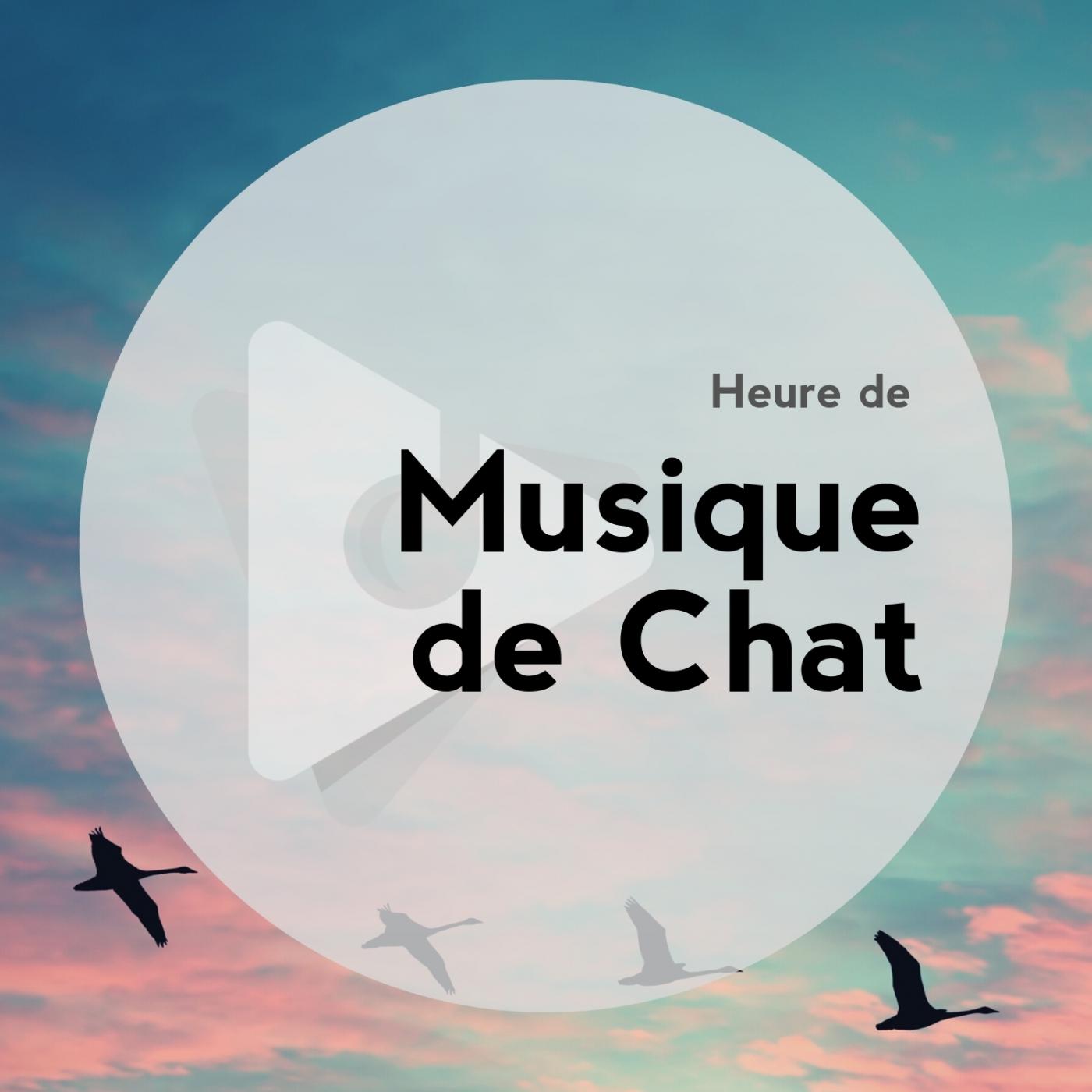 Heure de Musique de Chat