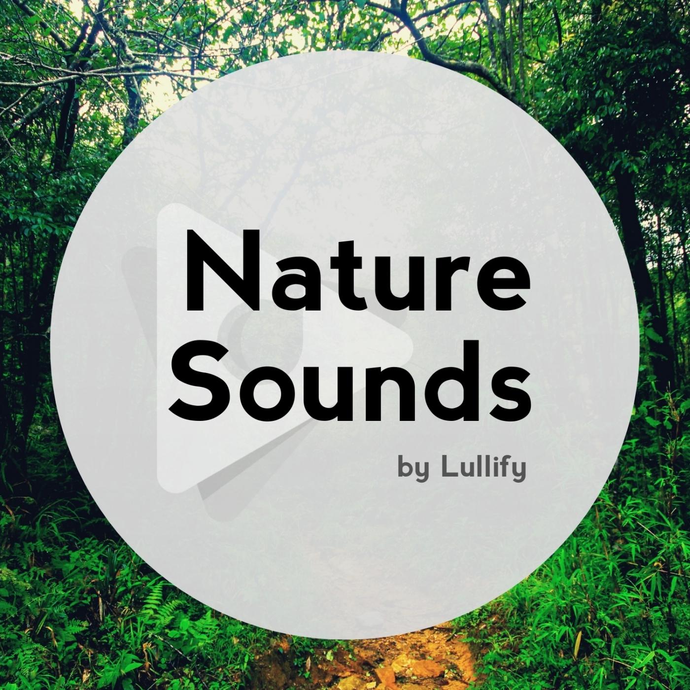 Nature Sounds by Lullify