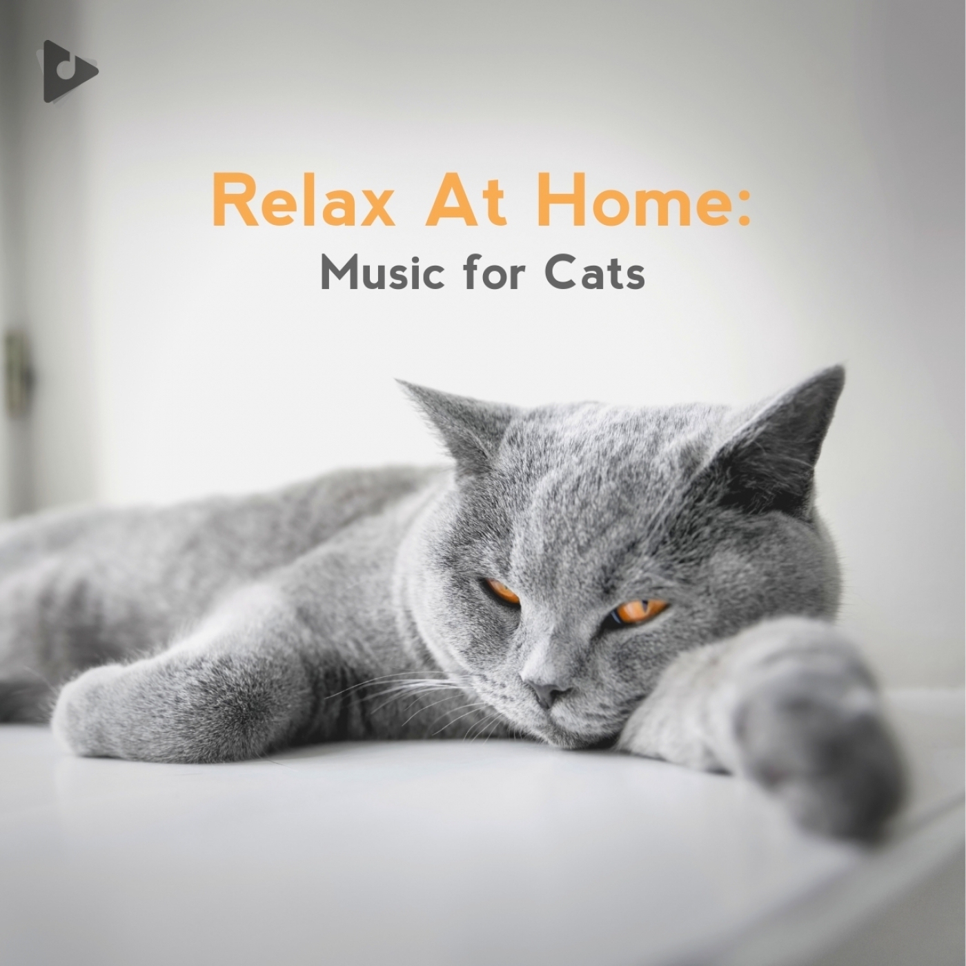 Stay-at-Home: Music for Cats