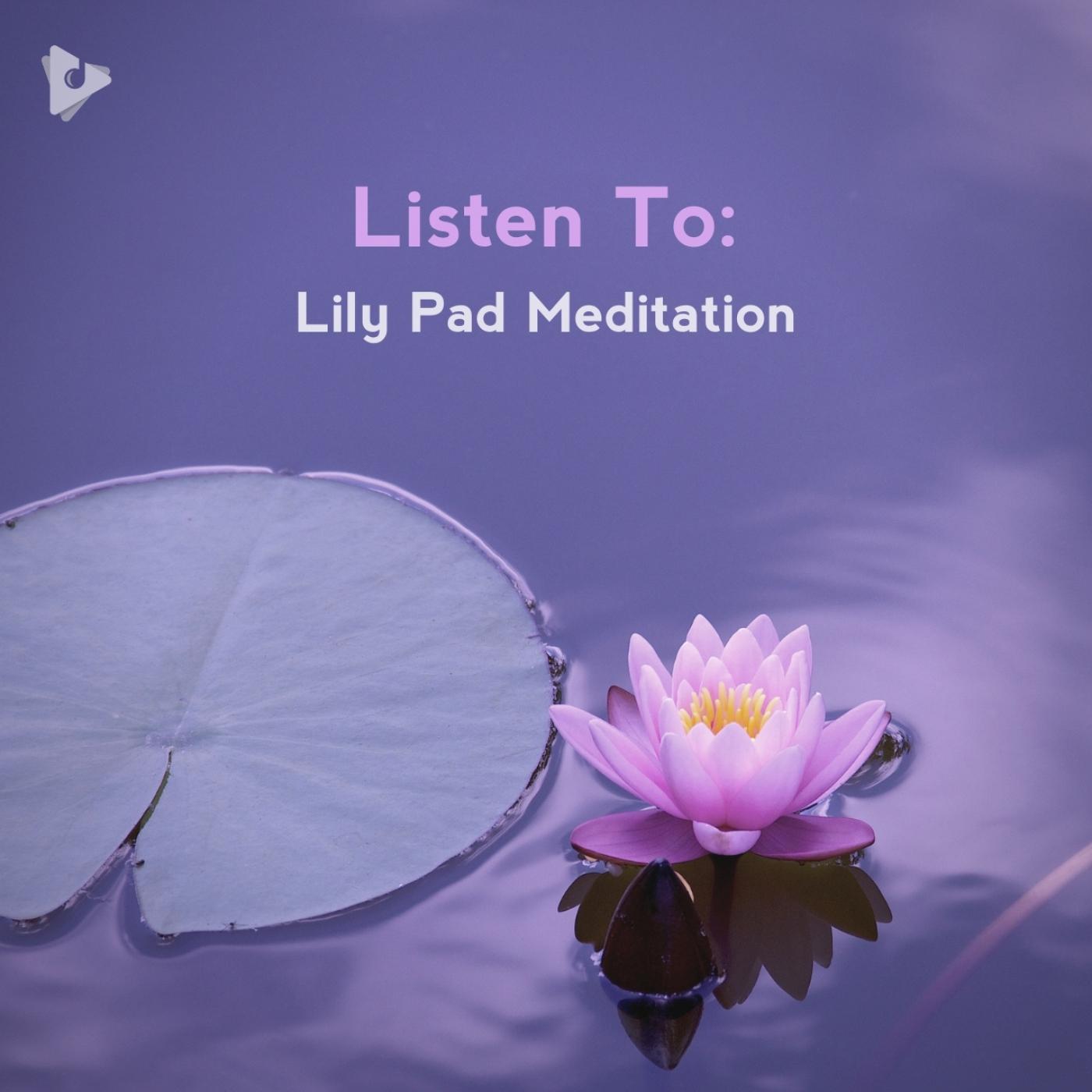 Listen To: Lily Pad Meditation