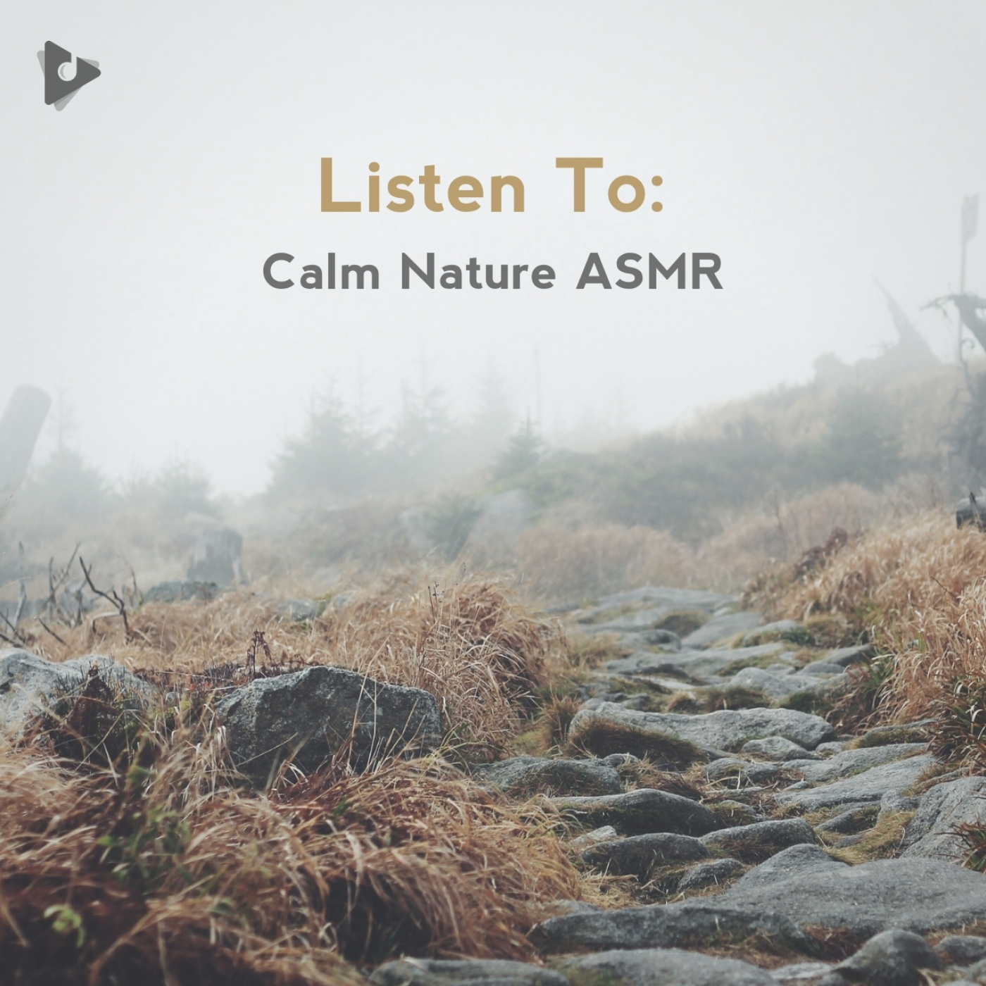 Listen To: Calm Nature ASMR