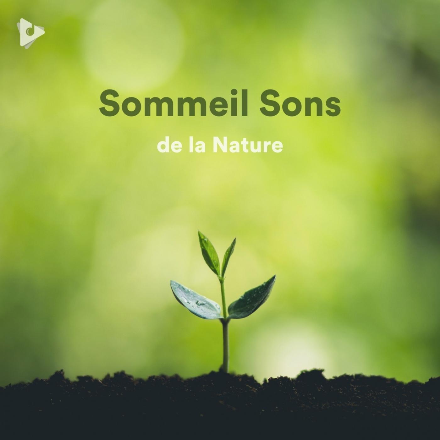 Sommeil Sons de la Nature