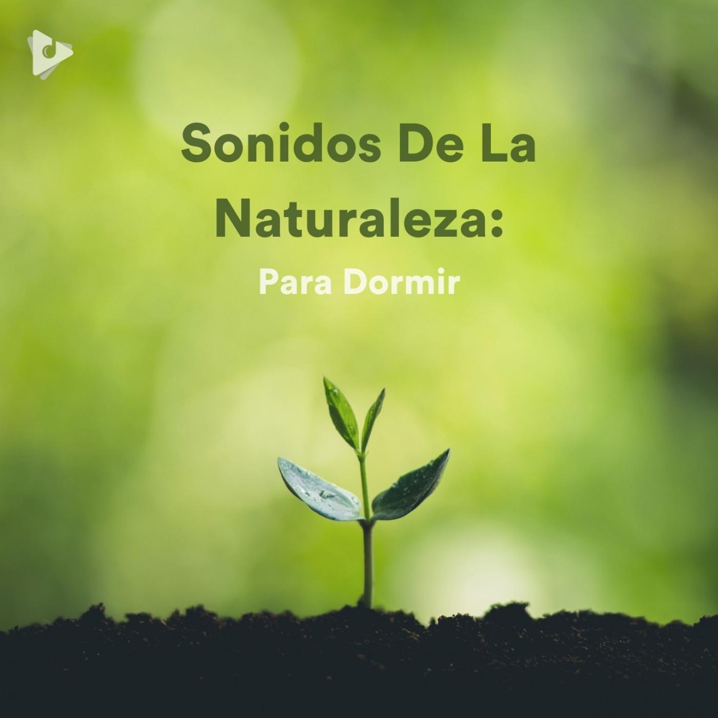 Sonidos De La Naturaleza: Para Dormir