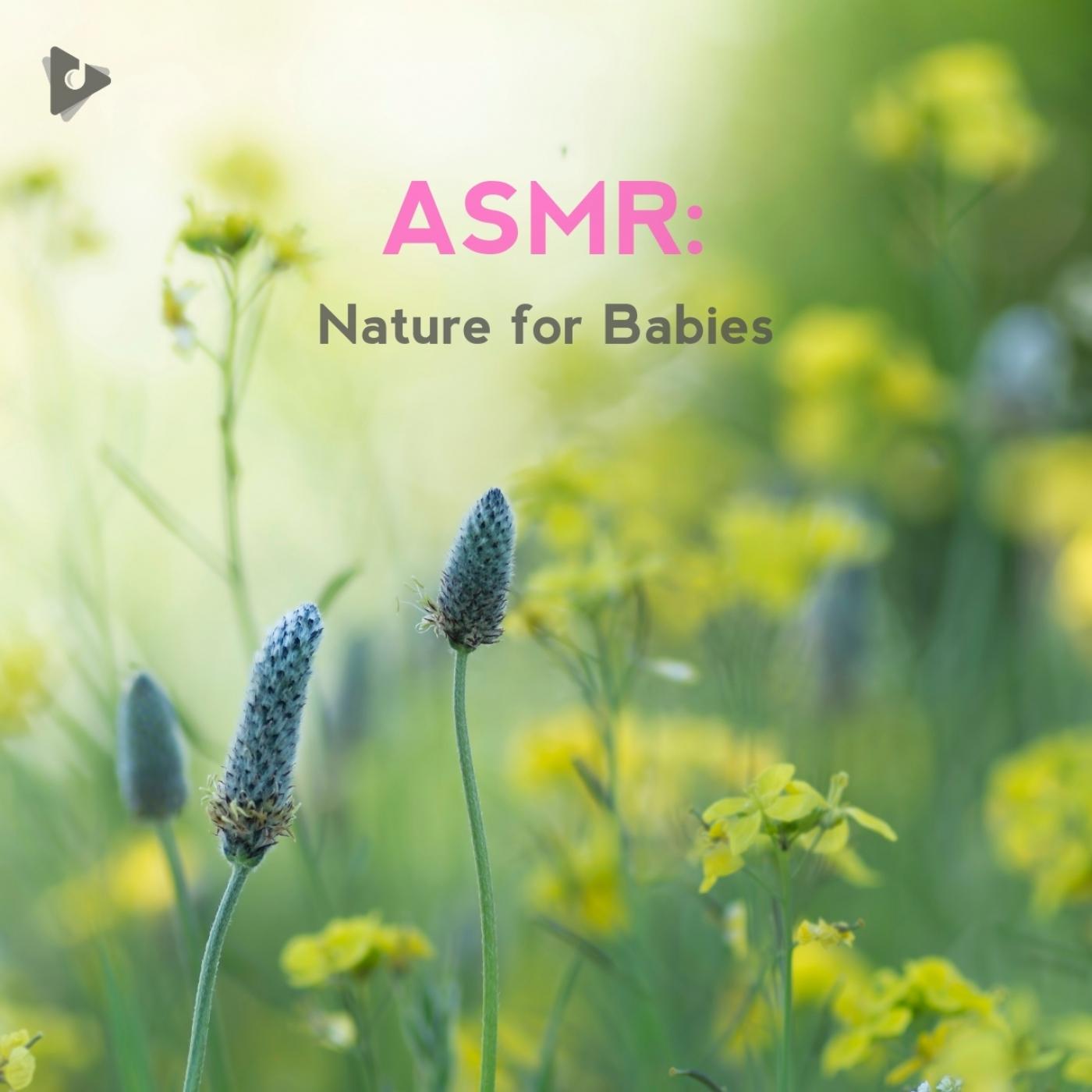 ASMR: Nature for Babies