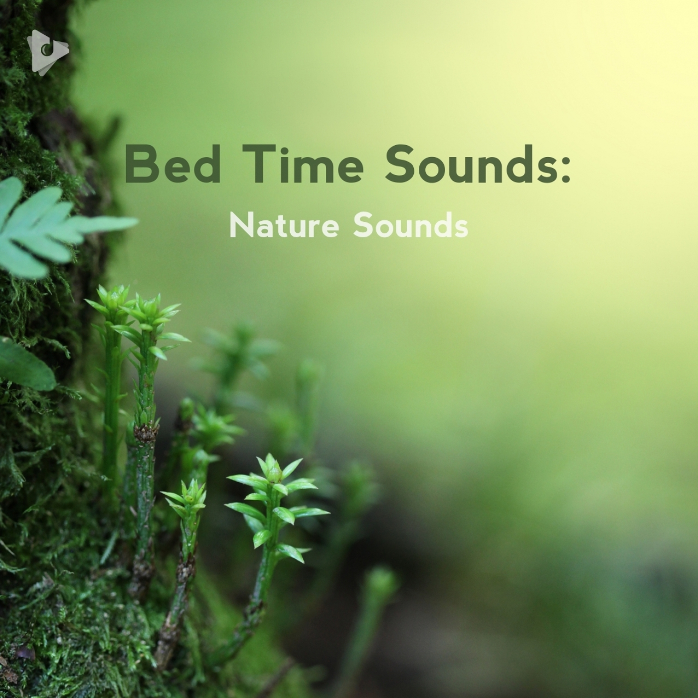 Bed Time Sounds: Nature Sounds
