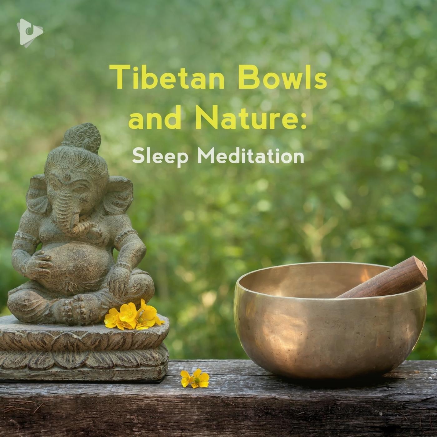 Tibetan Bowls and Nature: Sleep Meditation