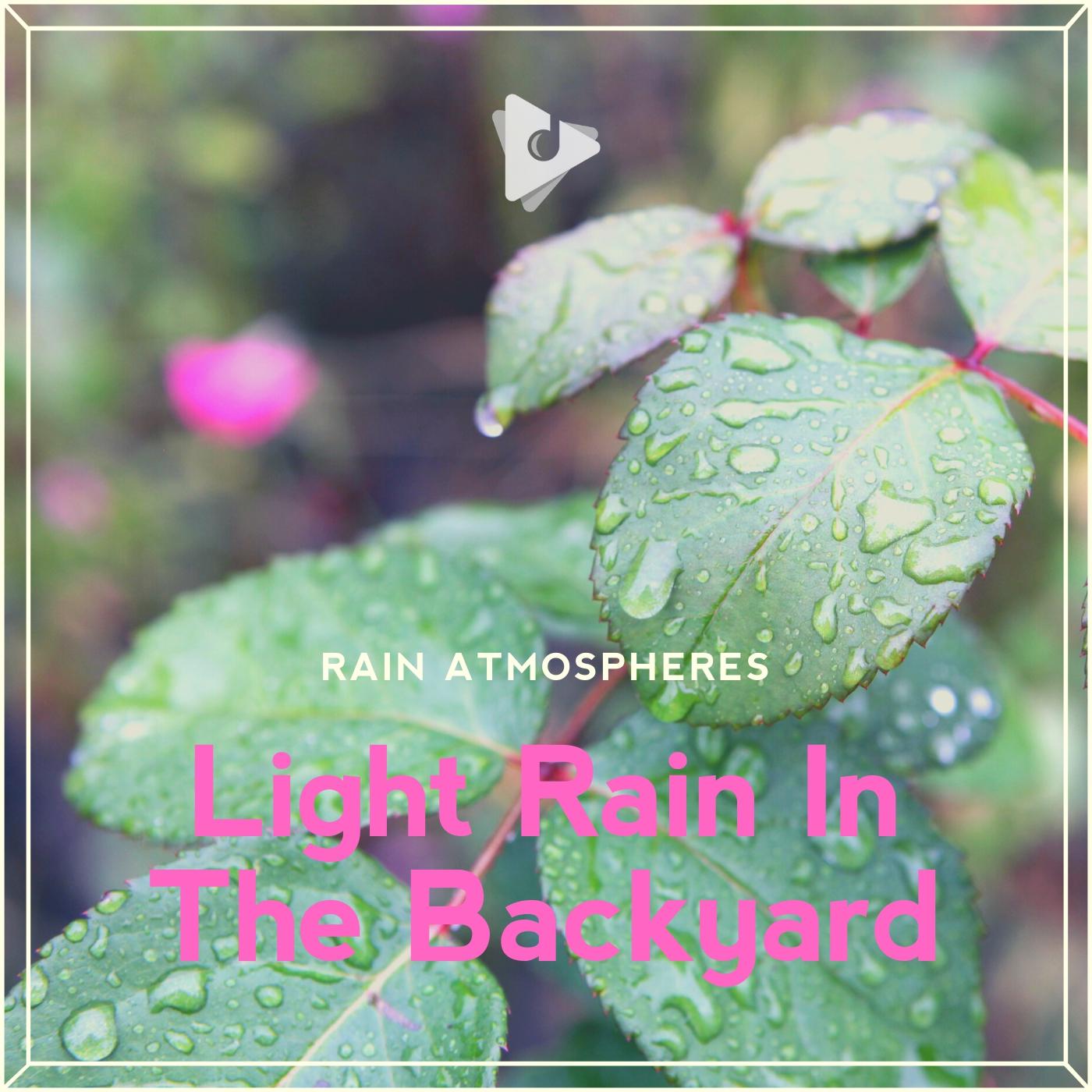 Light Rain In The Backyard