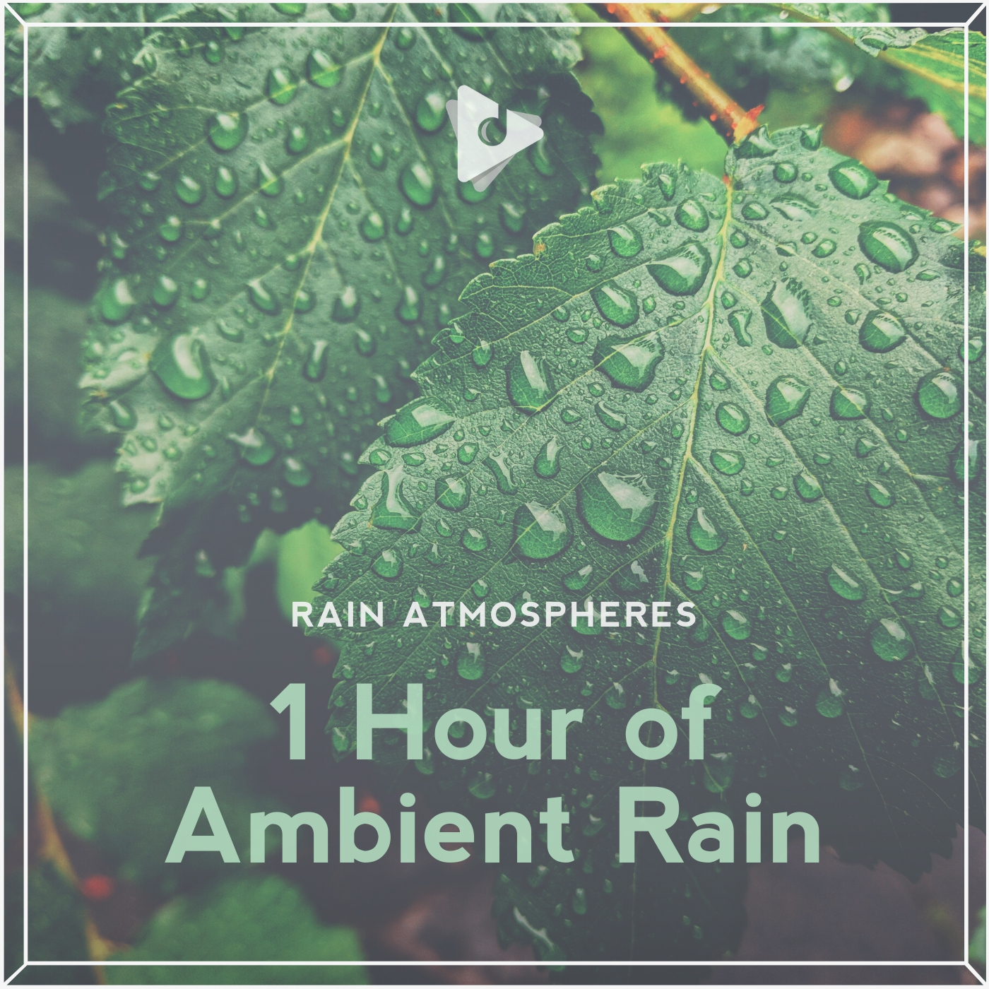 1 Hour of Ambient Rain