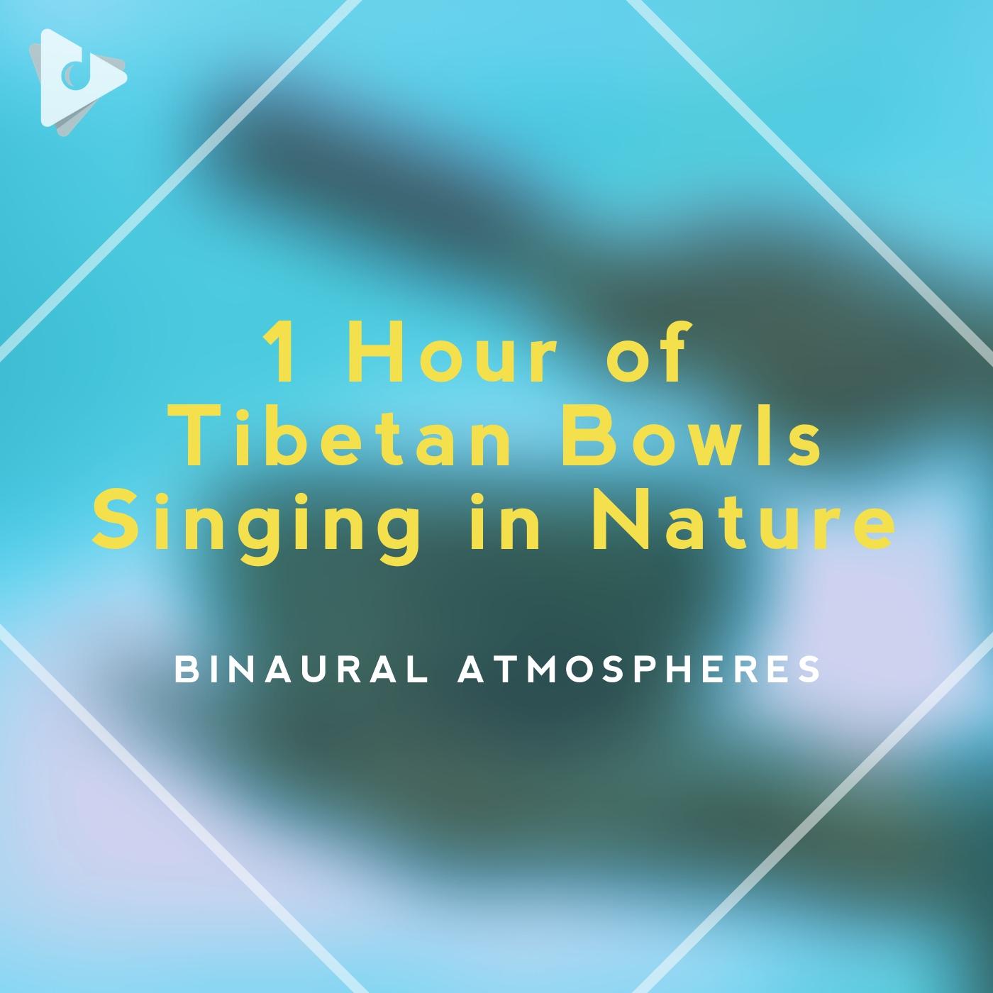 1 Hour of Tibetan Bowls Singing in Nature