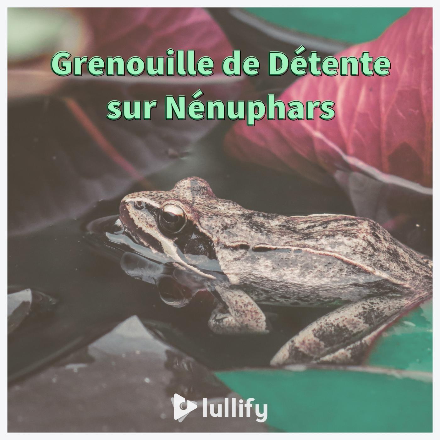 Grenouille de Détente sur Nénuphars