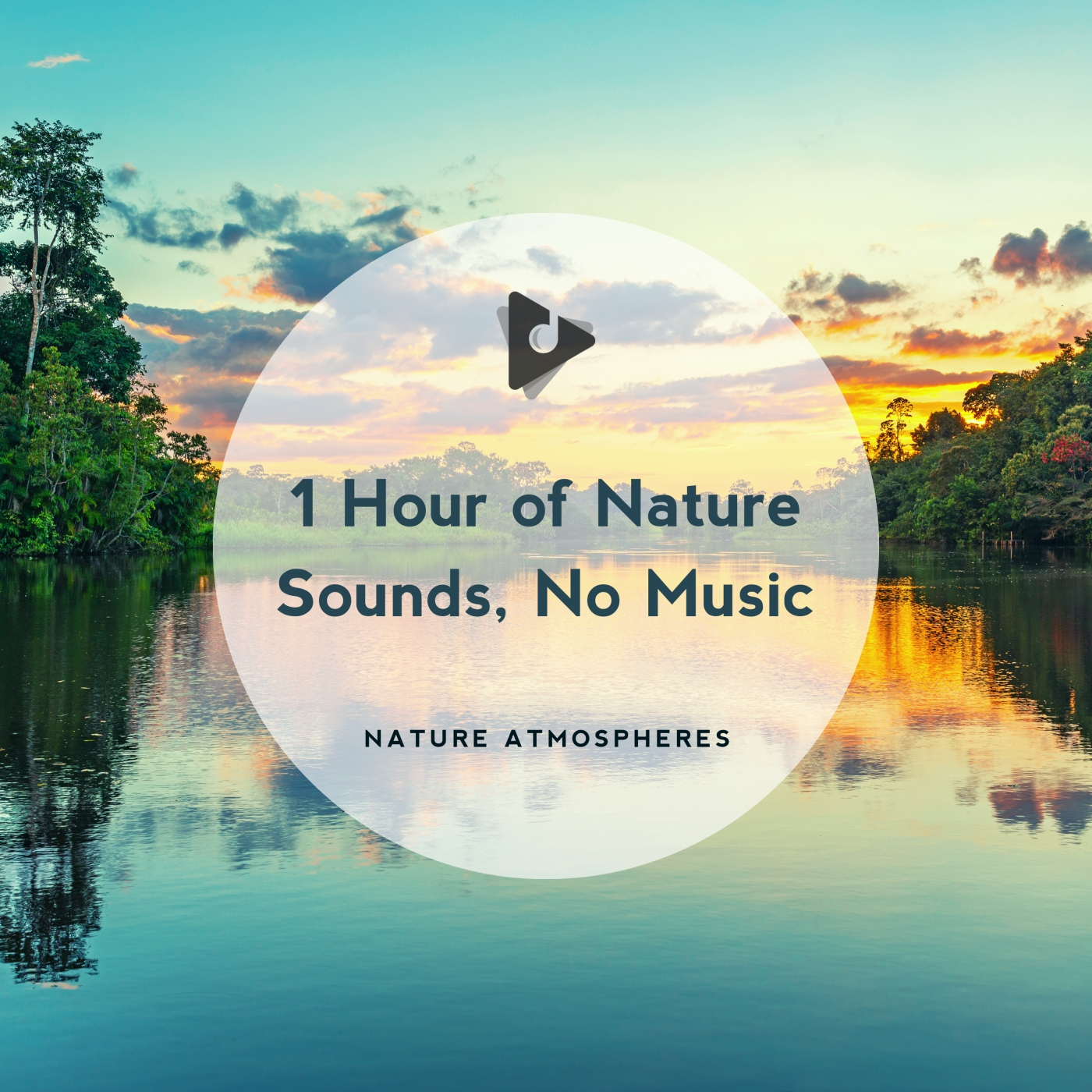 1 Hour of Nature Sounds, No Music