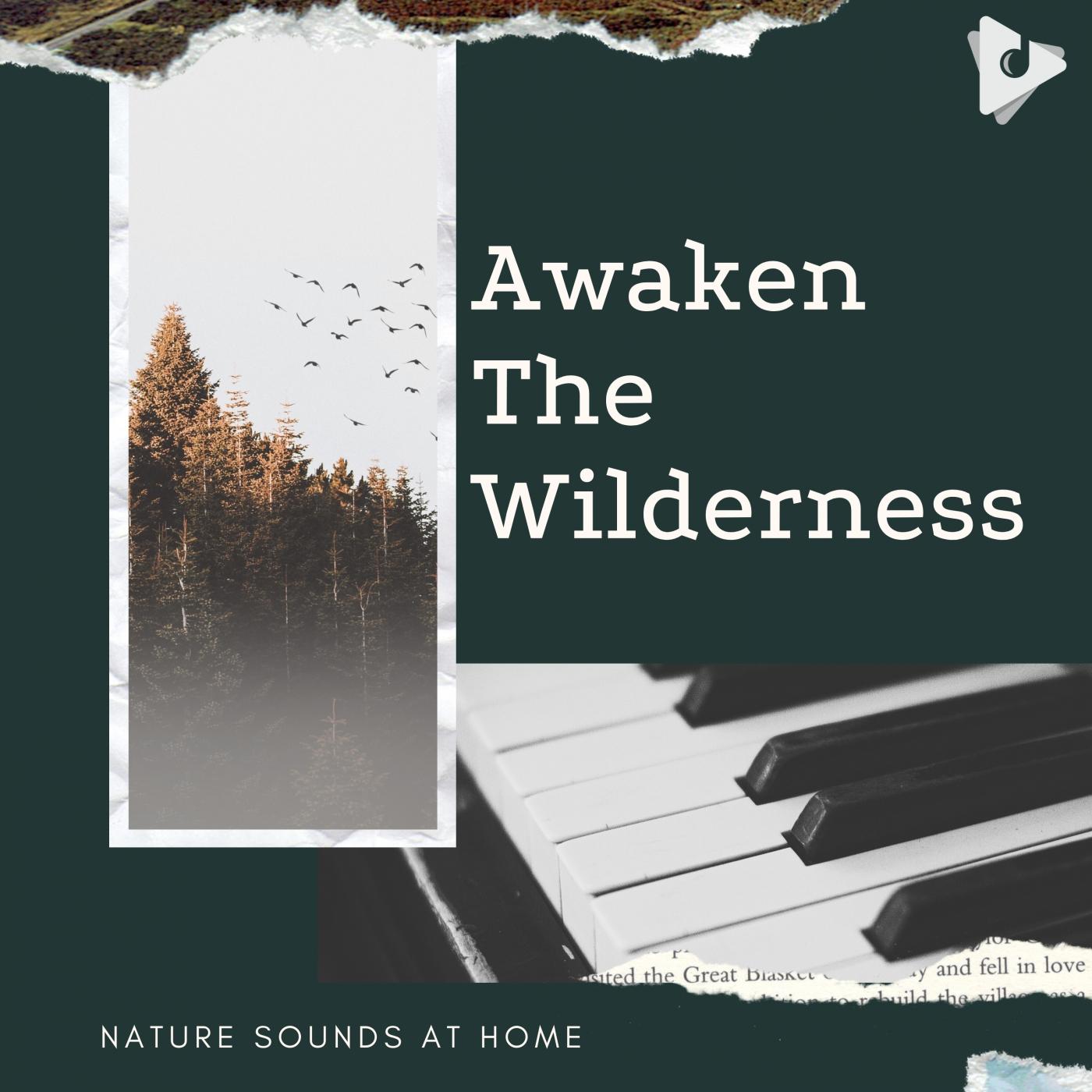 Awaken The Wilderness