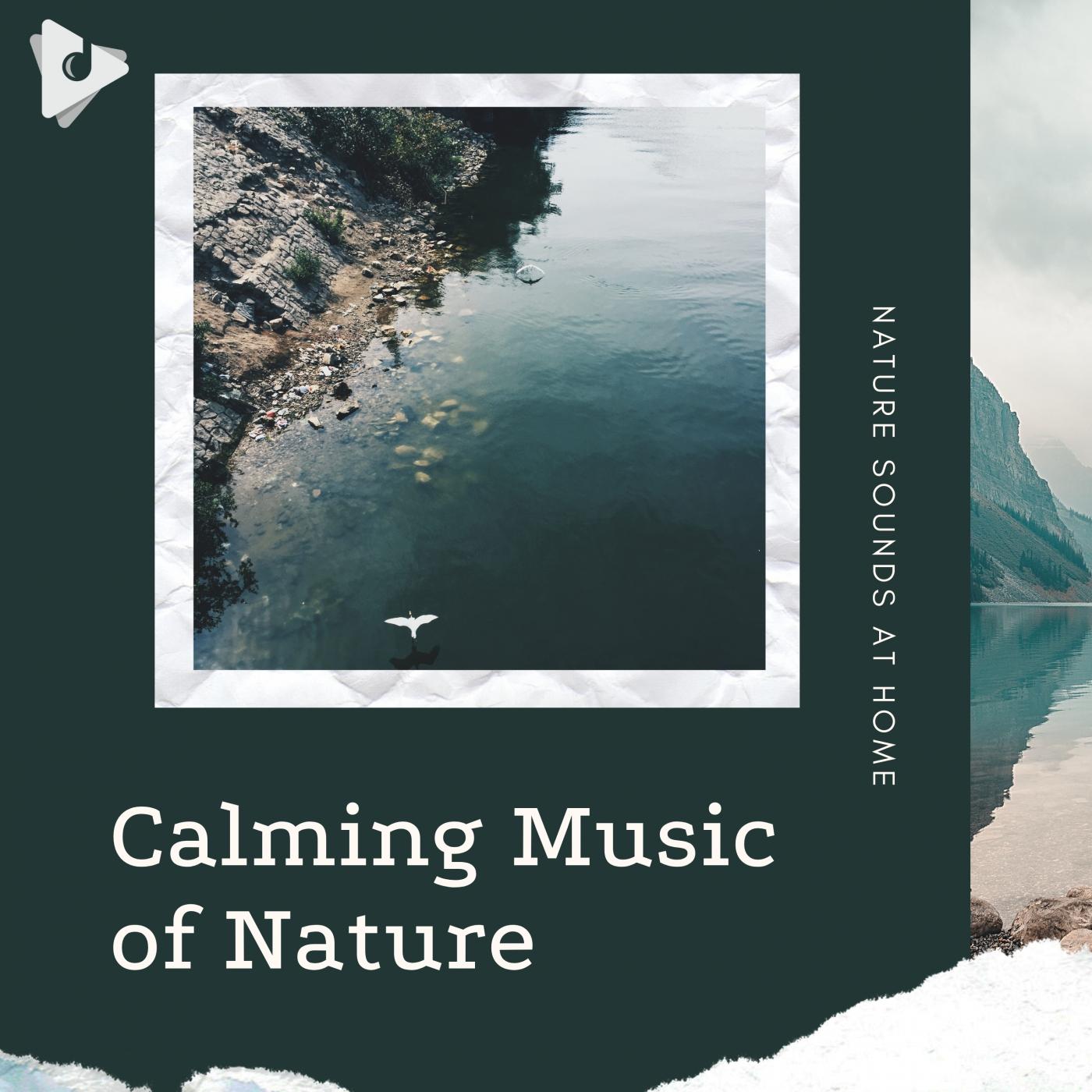 Calming Music of Nature
