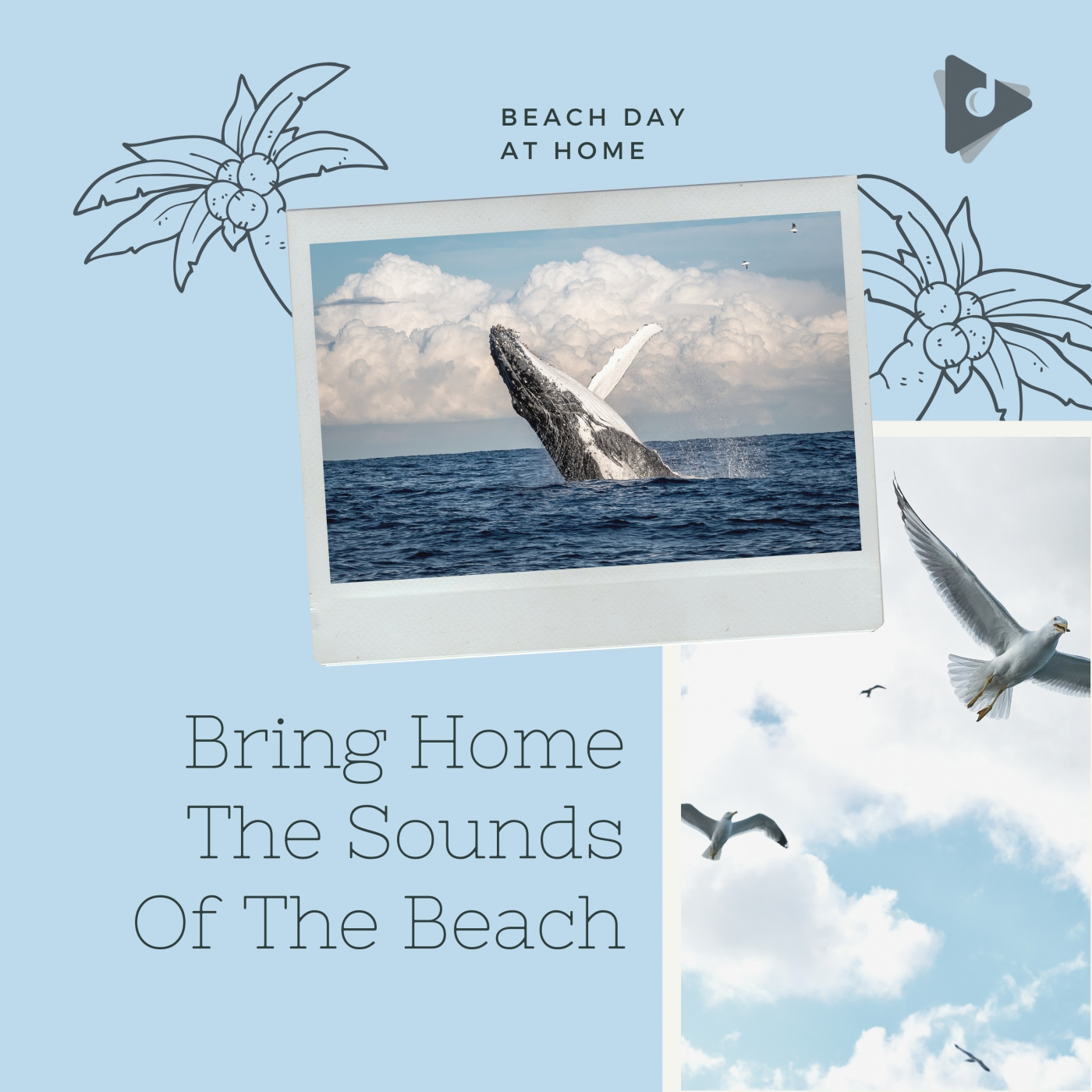 Bring Home The Sounds Of The Beach