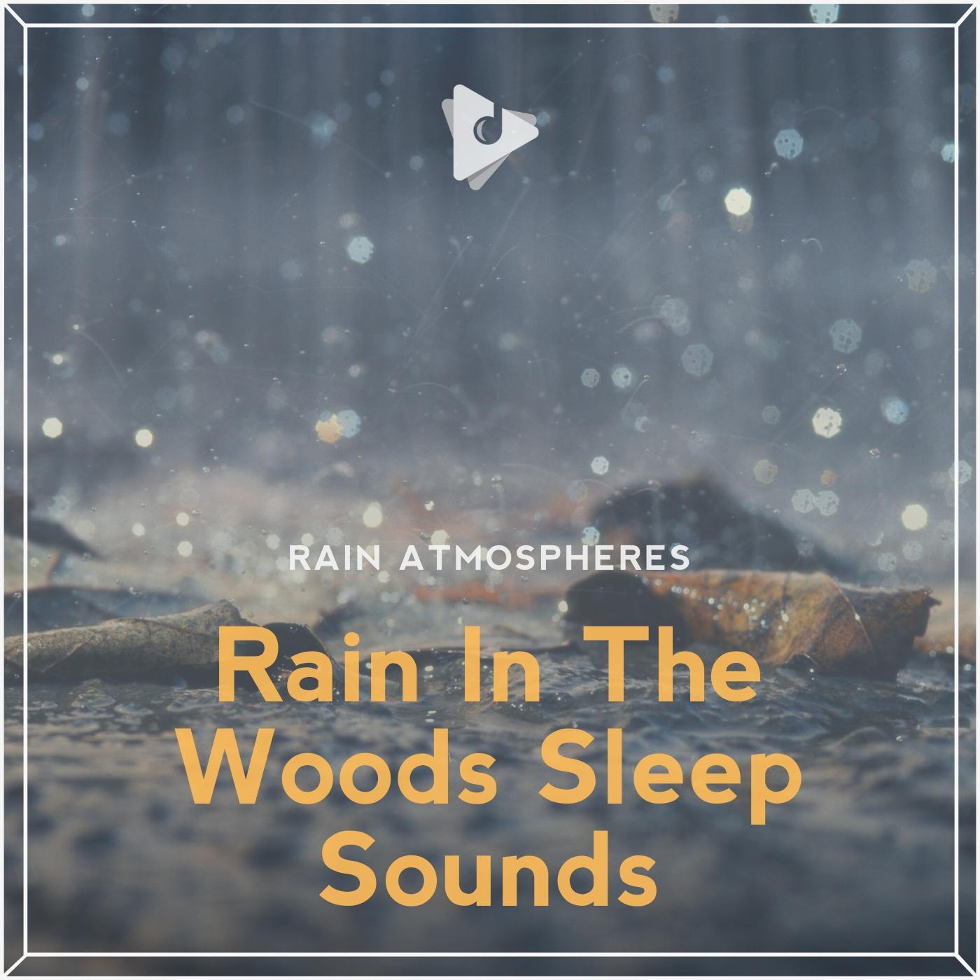Rain In The Woods Sleep Sounds