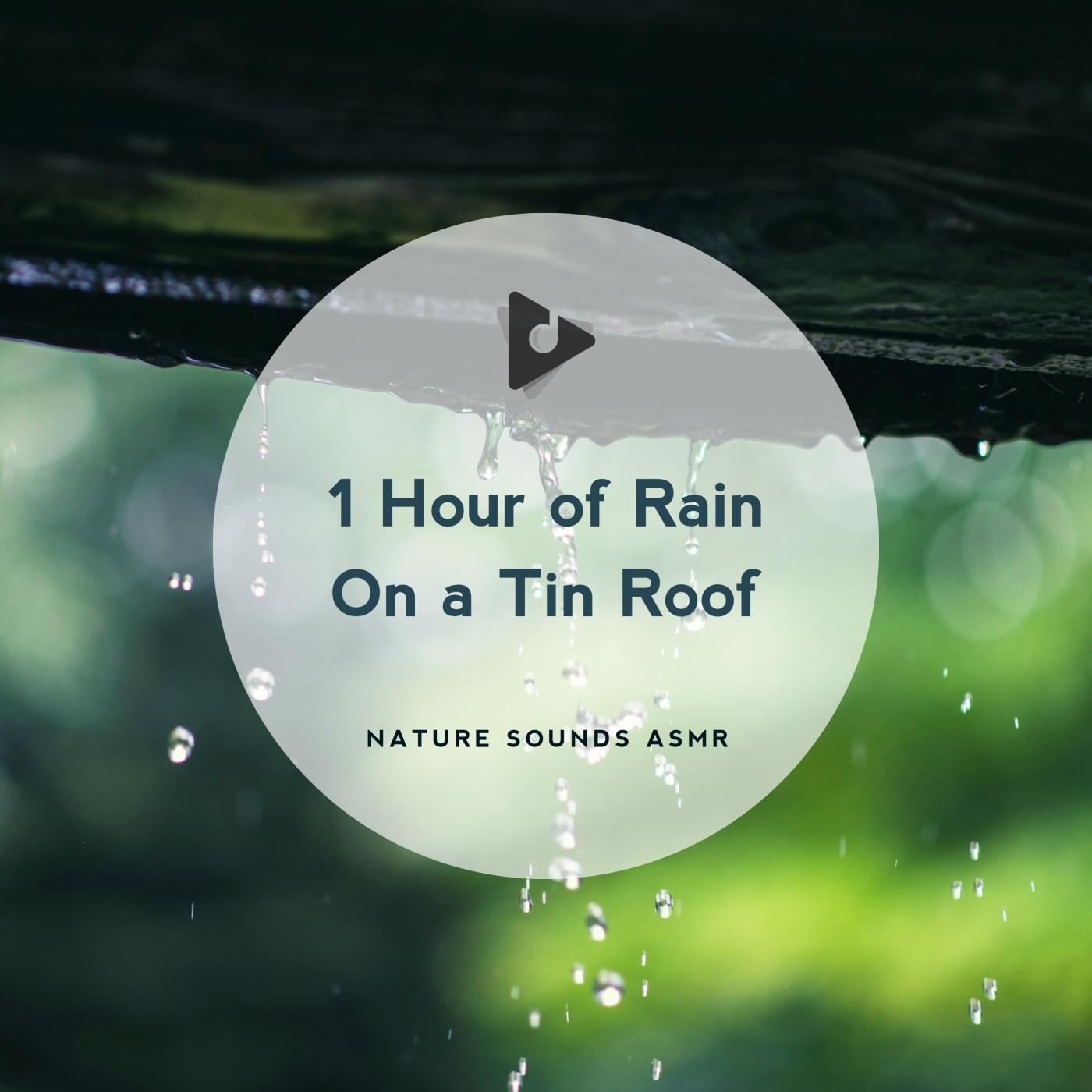 1 Hour of Rain On a Tin Roof