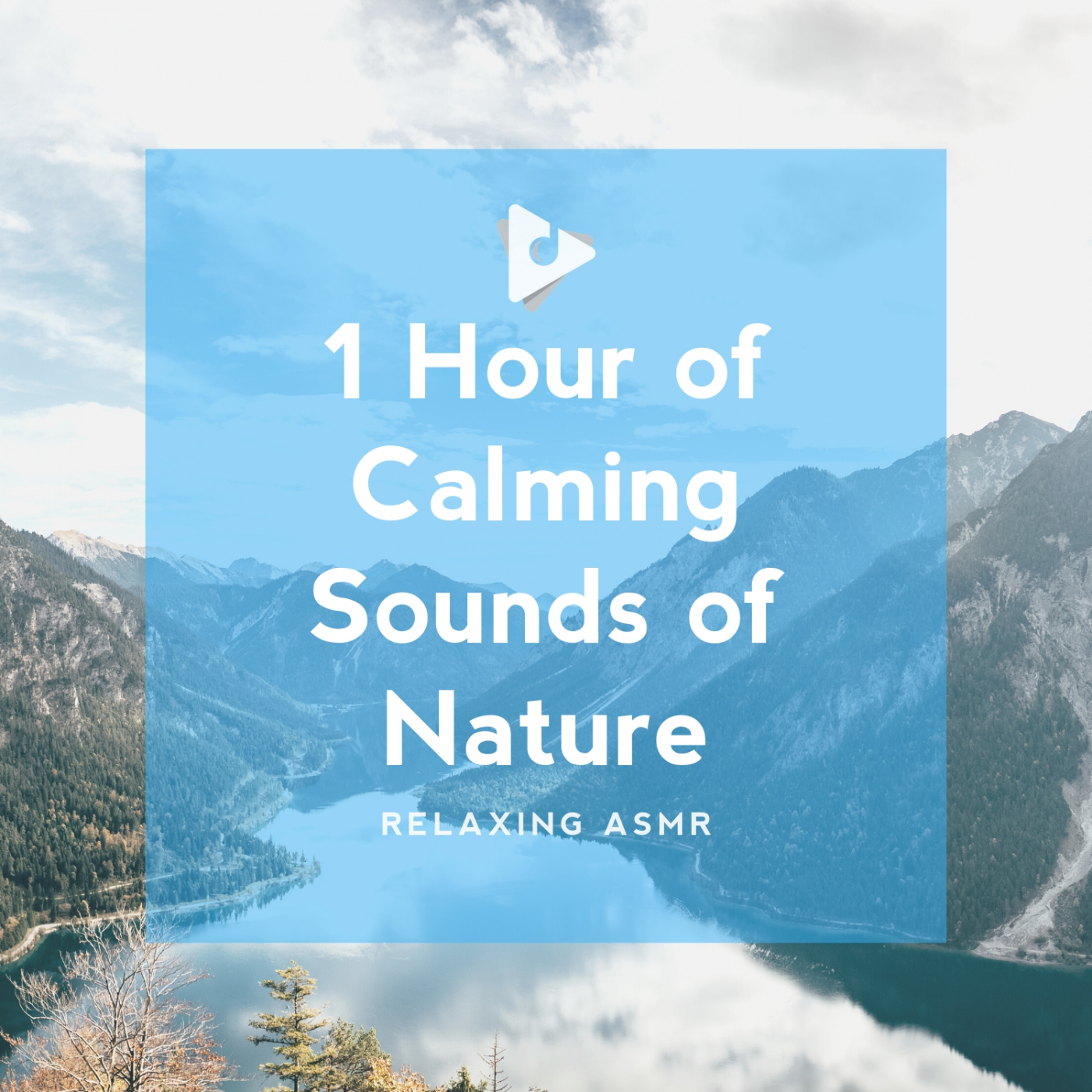 1 Hour of Calming Sounds of Nature