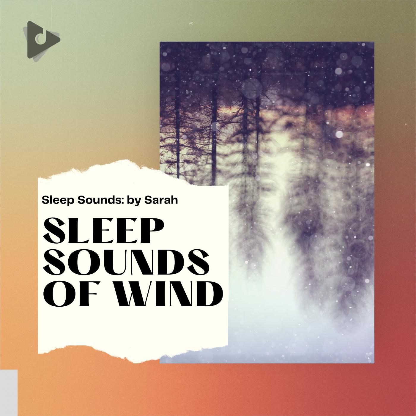 Sleep Sounds of Wind