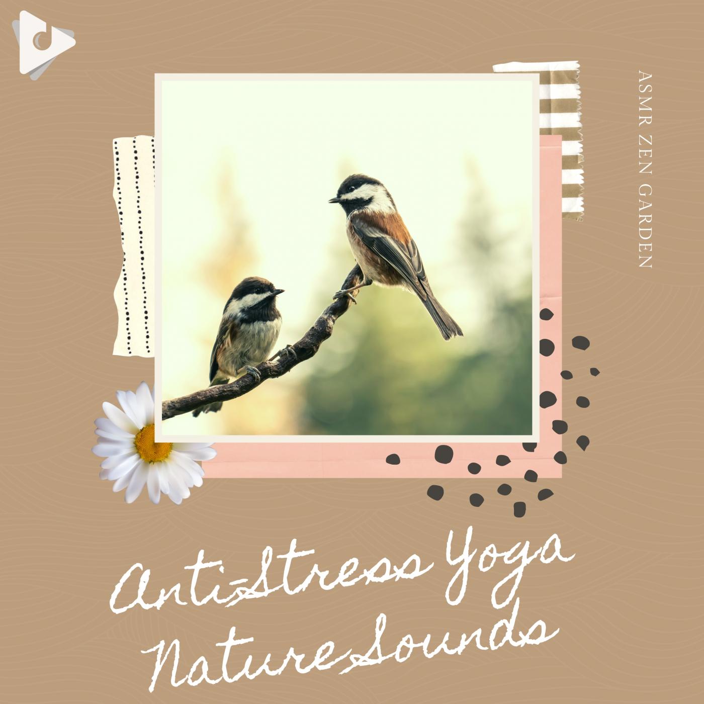 Anti-Stress Yoga Nature Sounds