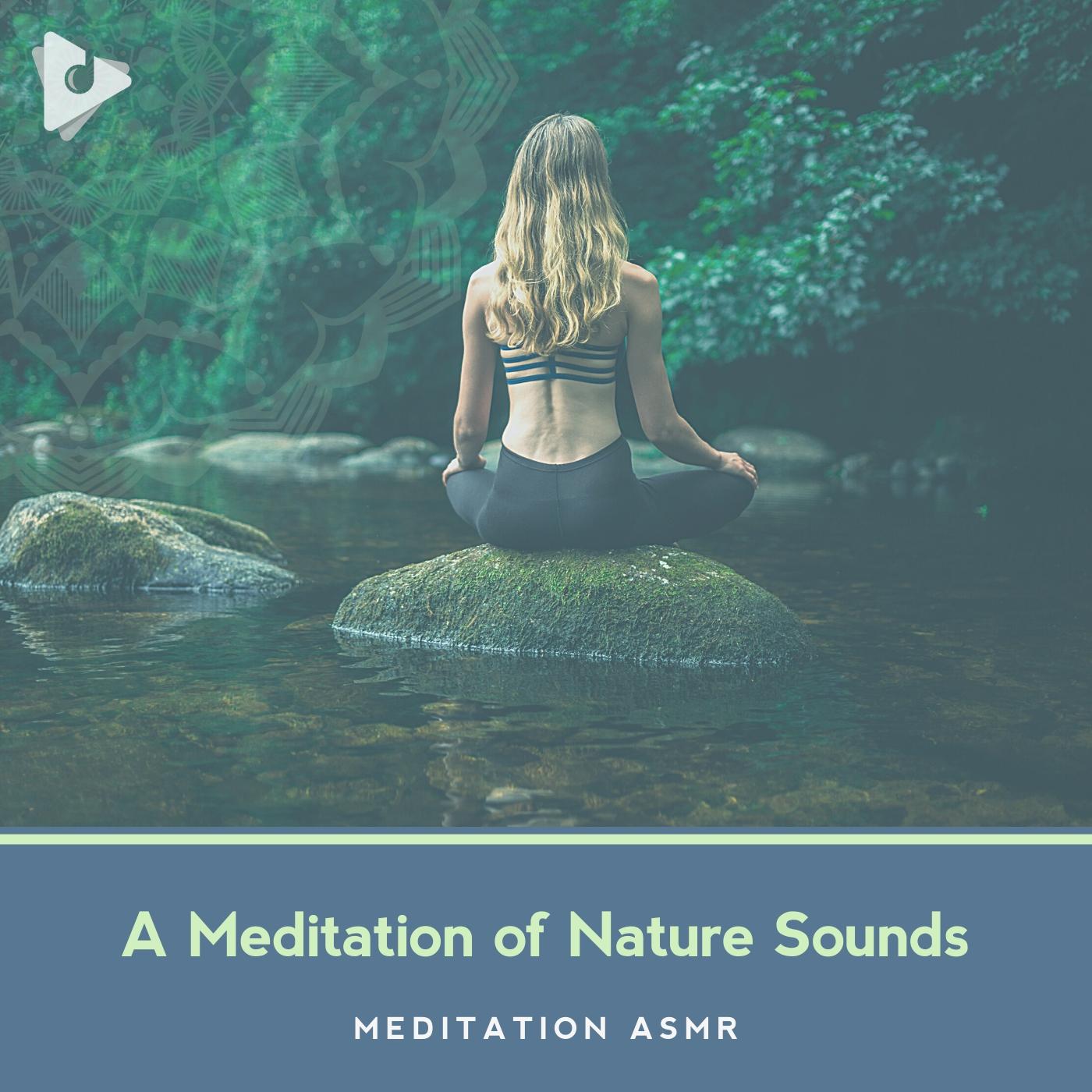 A Meditation of Nature Sounds