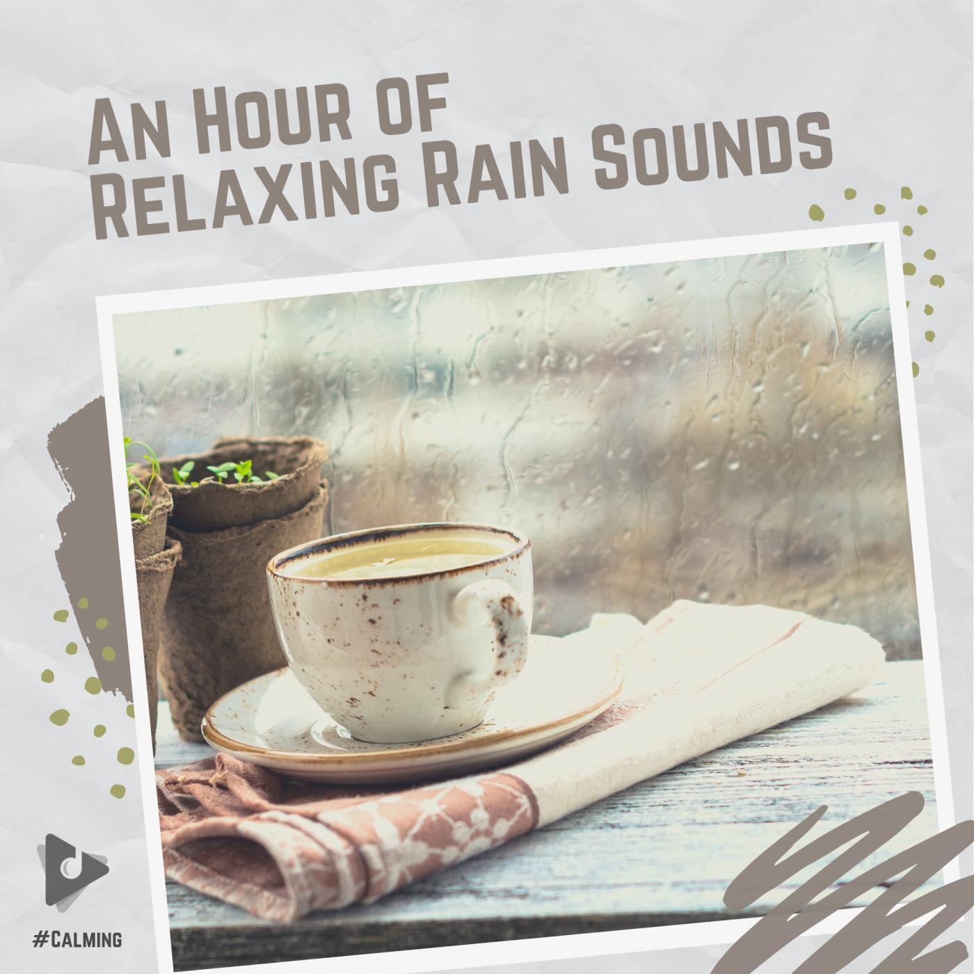 An Hour of Relaxing Rain Sounds