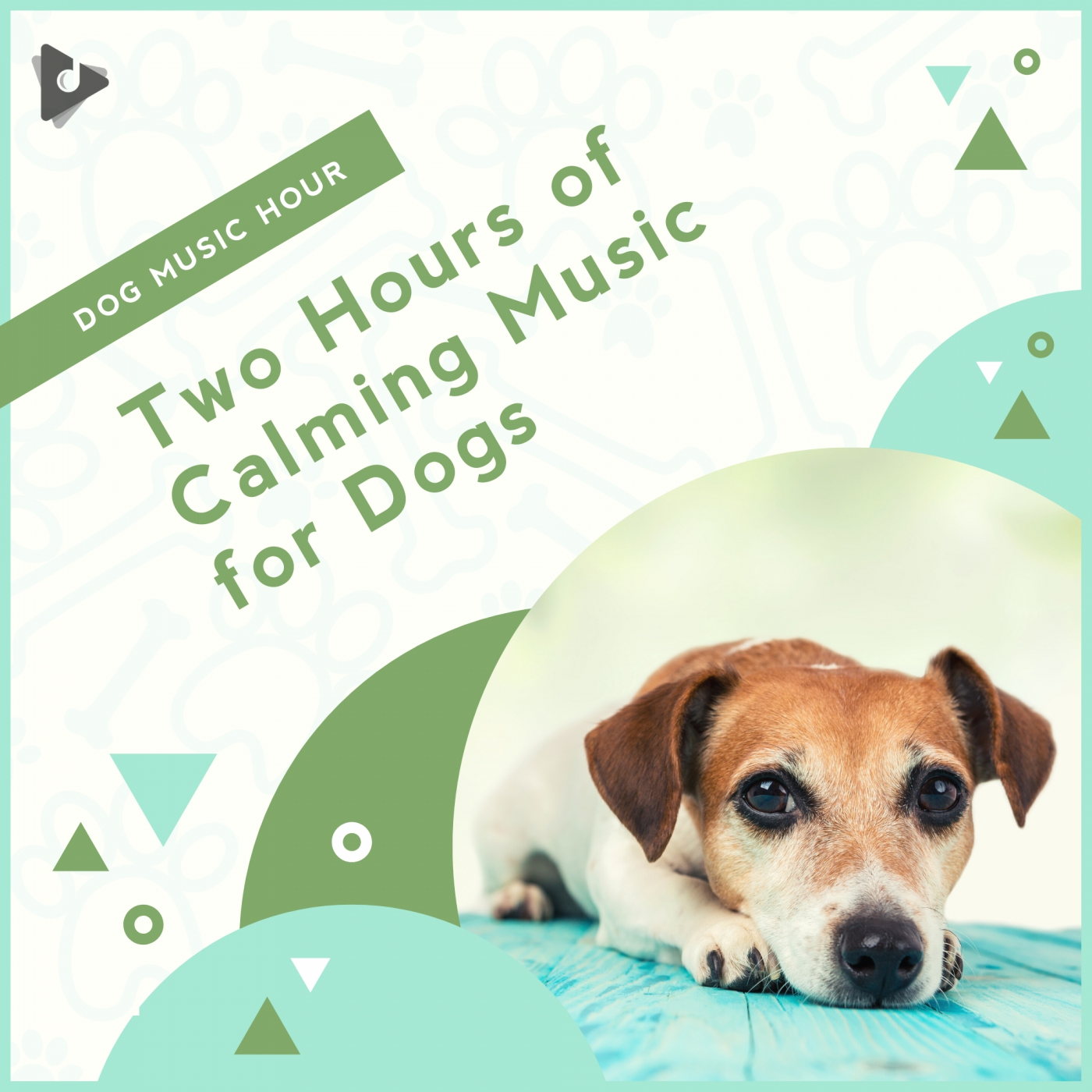 Two Hours of Calming Music for Dogs
