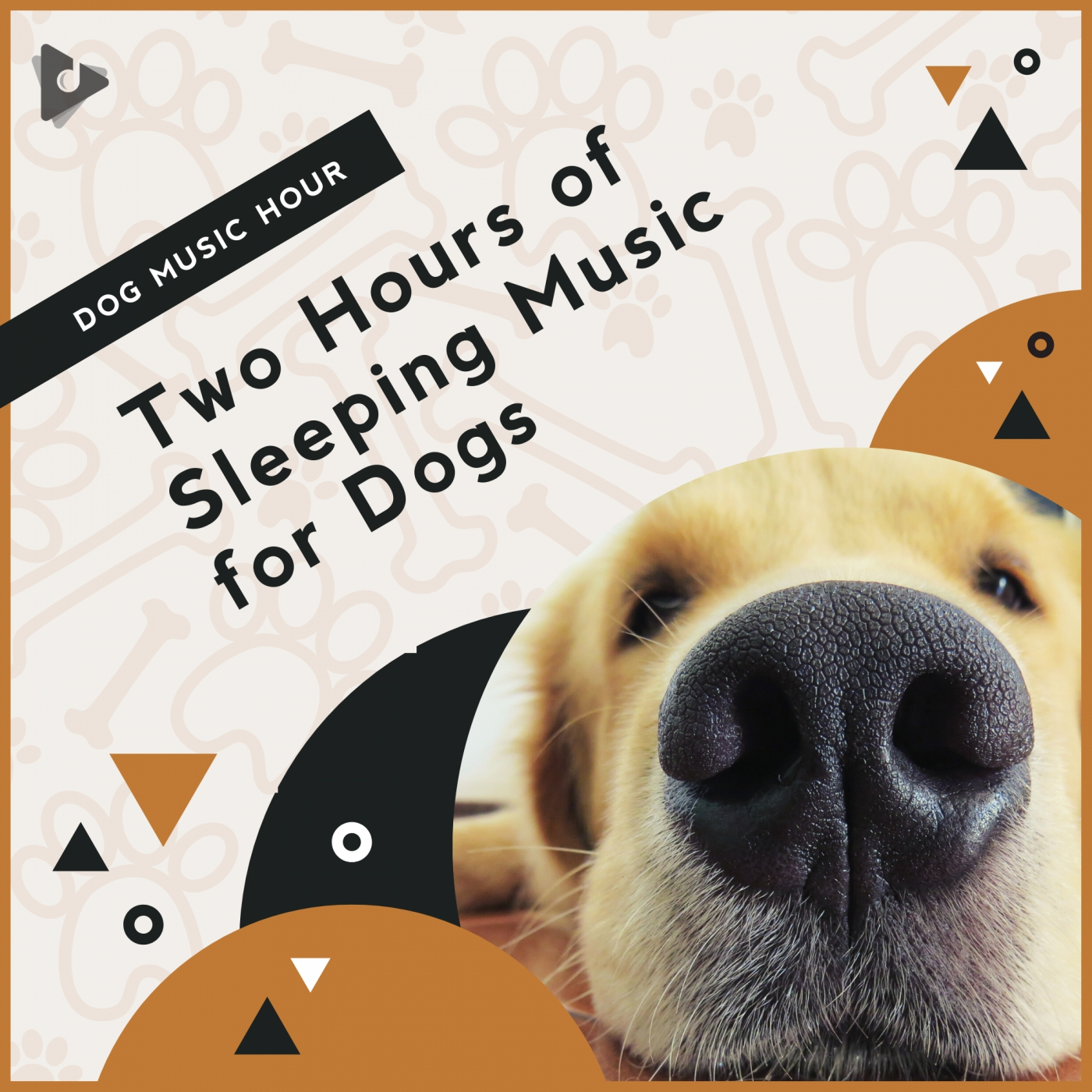 Two Hours of Sleeping Music for Dogs