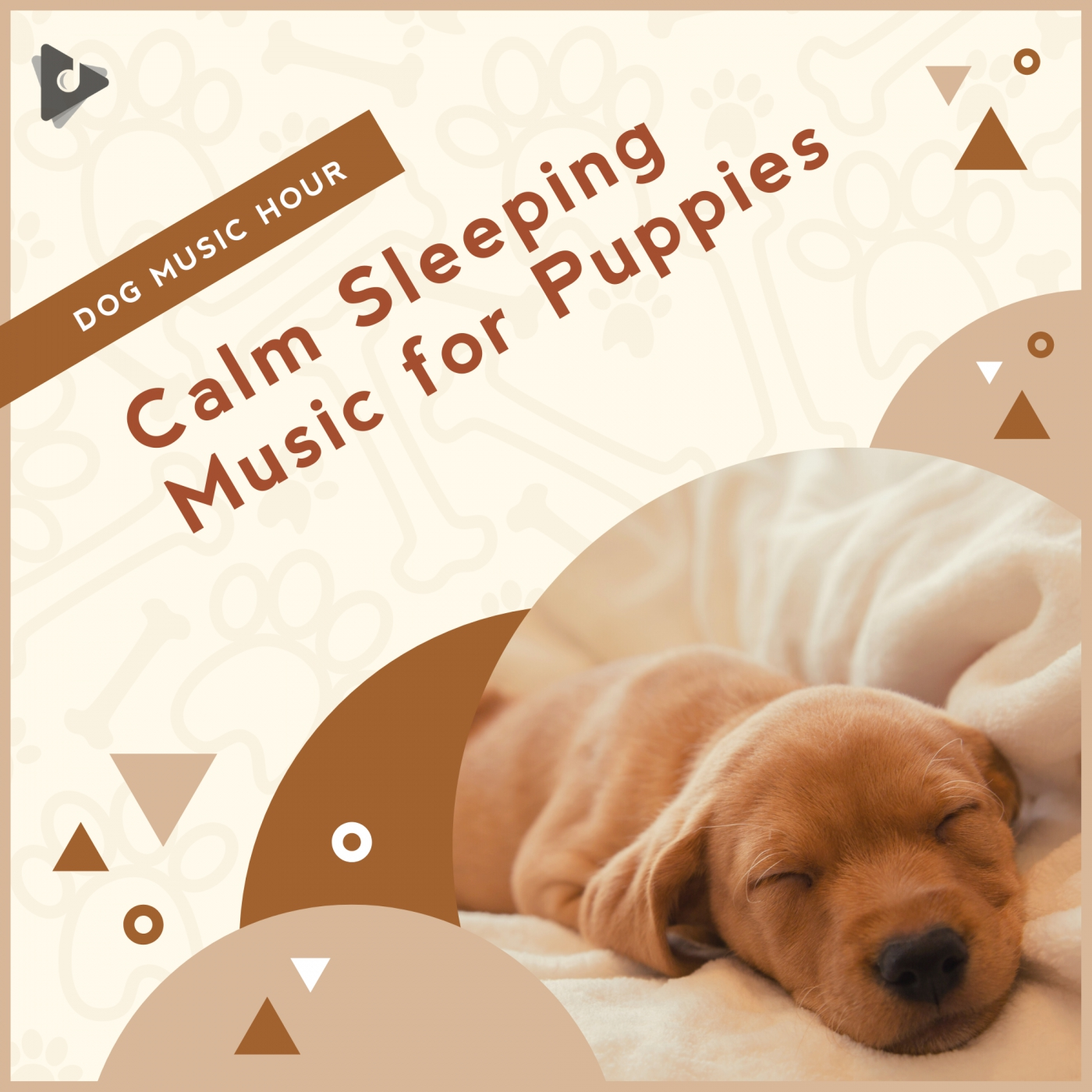 Calm Sleeping Music for Puppies