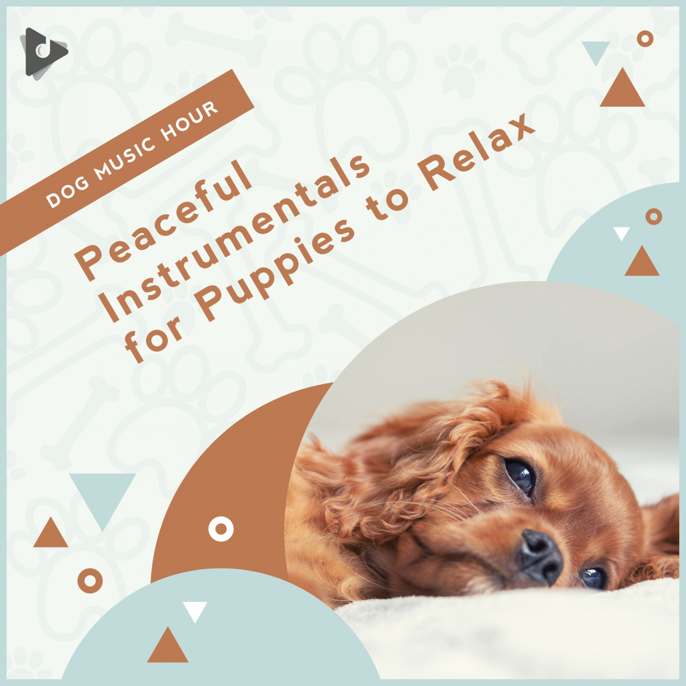 Peaceful Instrumentals for Puppies to Relax