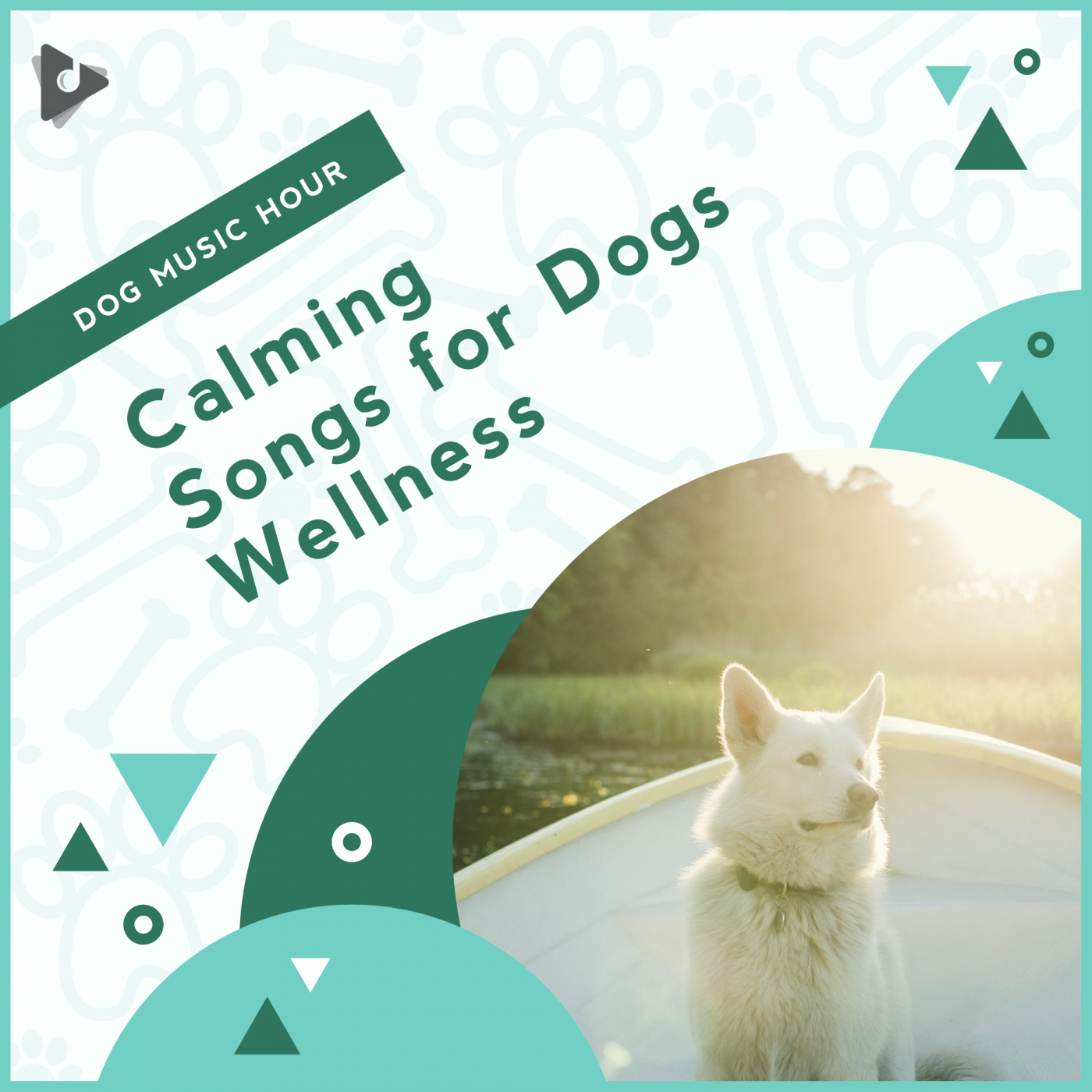 Calming Songs for Dogs Wellness