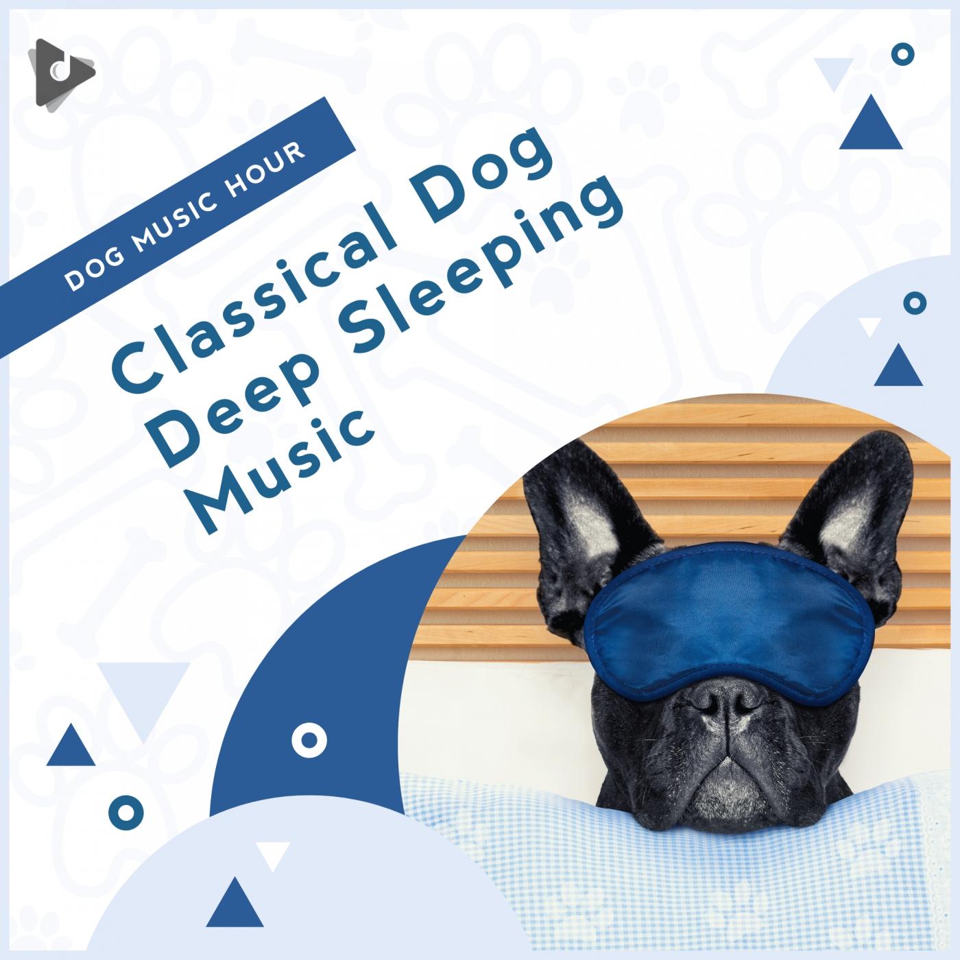 Classical Dog Deep Sleeping Music