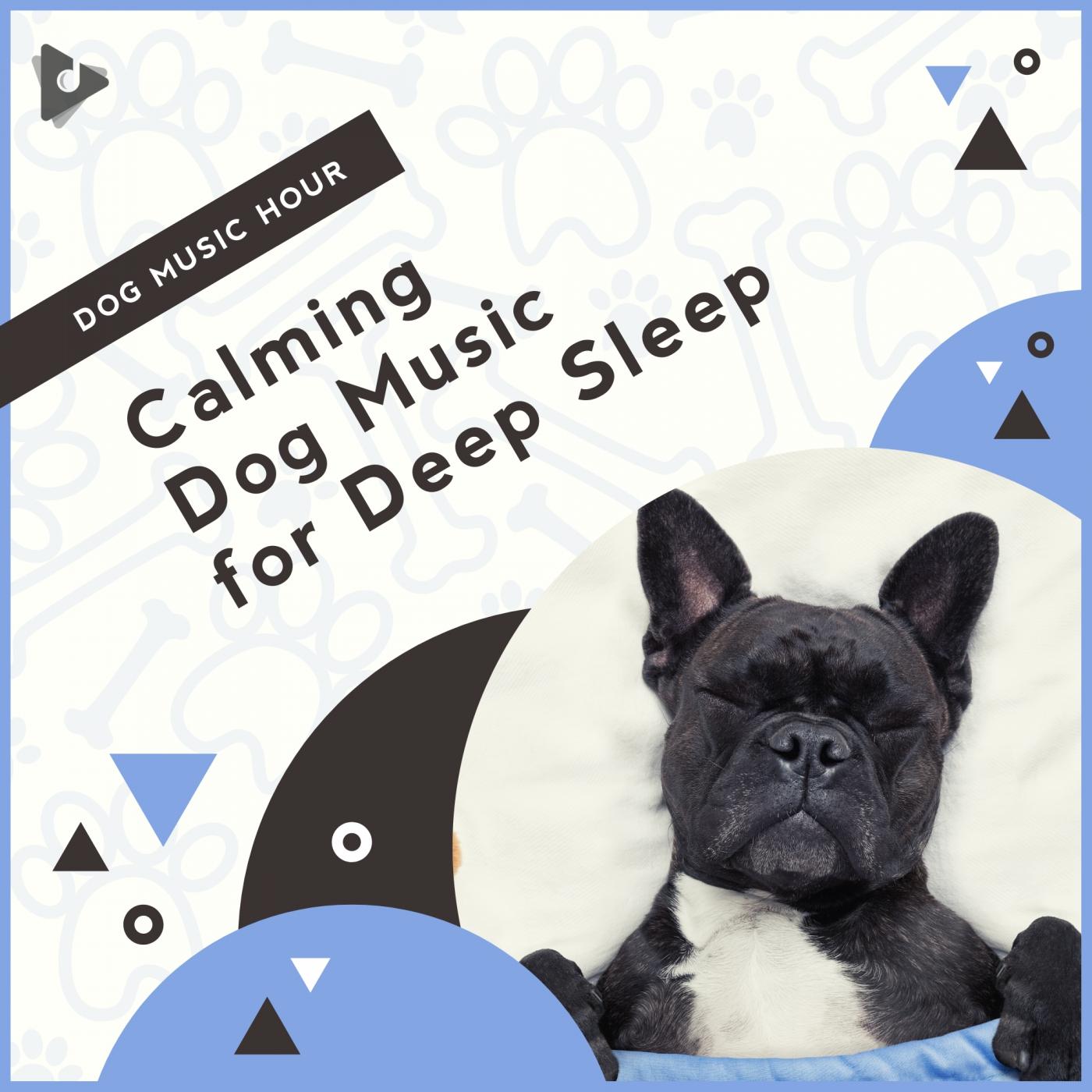 Calming Dog Music for Deep Sleep