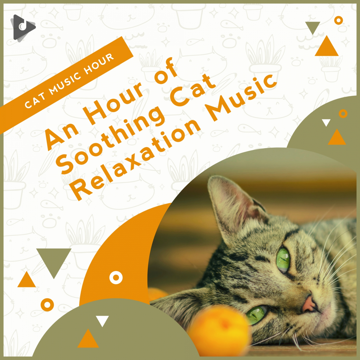 An Hour of Soothing Cat Relaxation Music