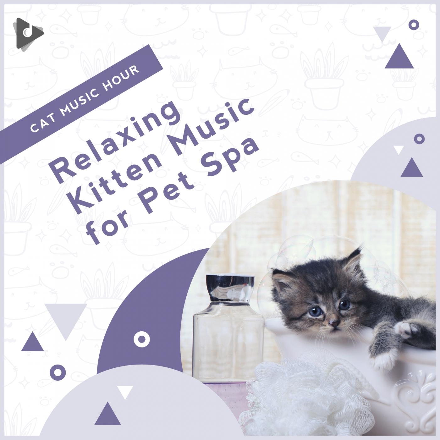 Relaxing Kitten Music for Pet Spa
