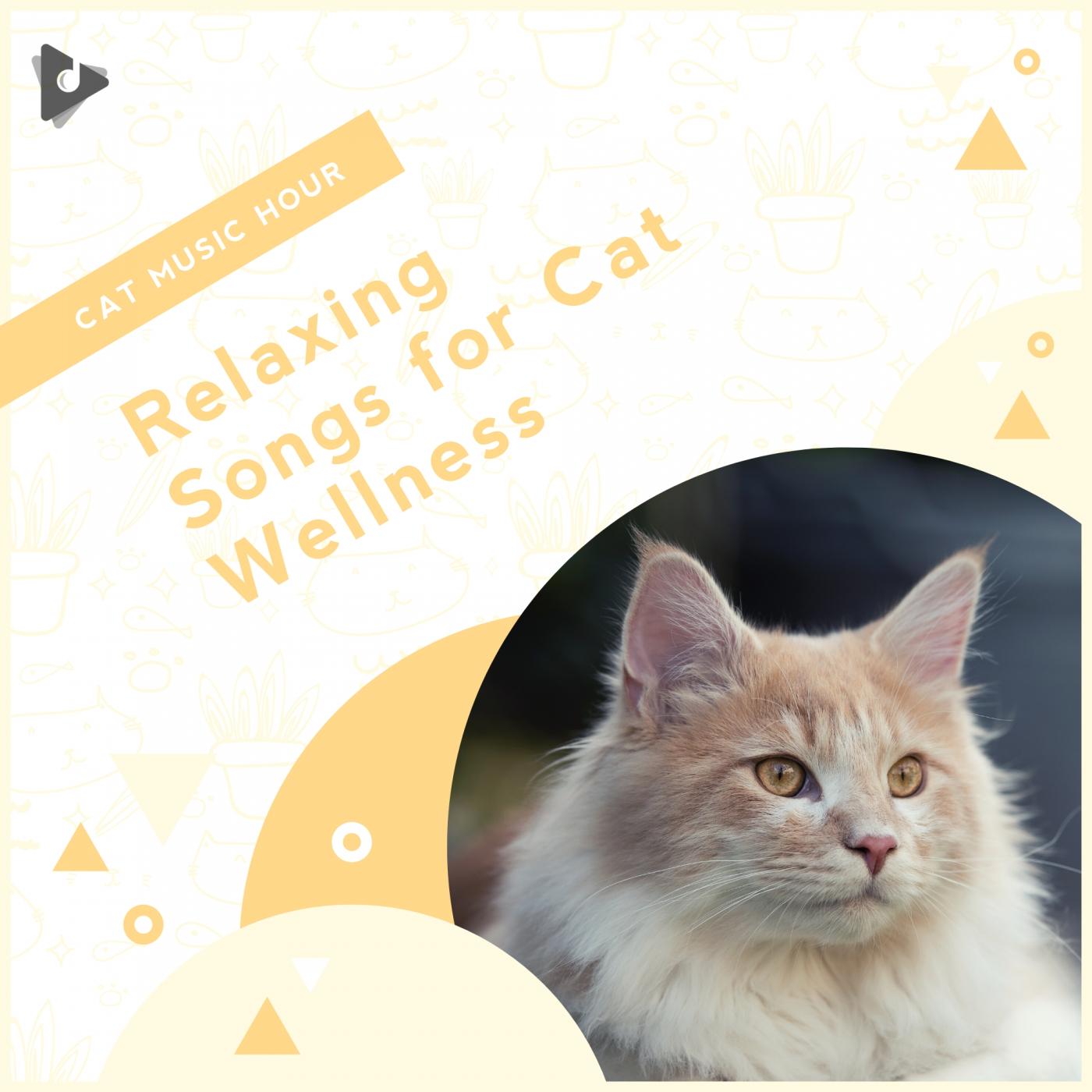 Relaxing Songs for Cat Wellness