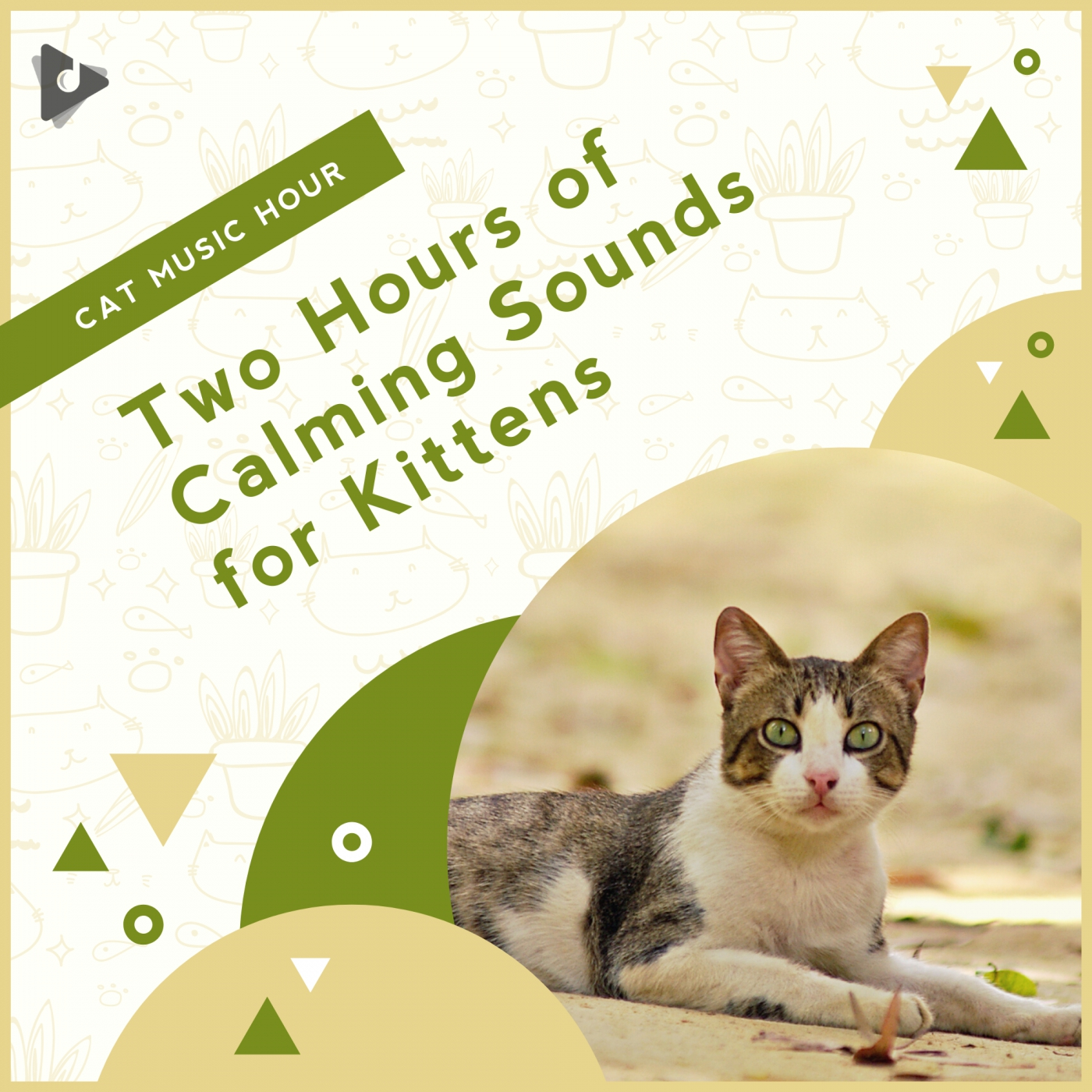 Two Hours of Calming Sounds for Kittens