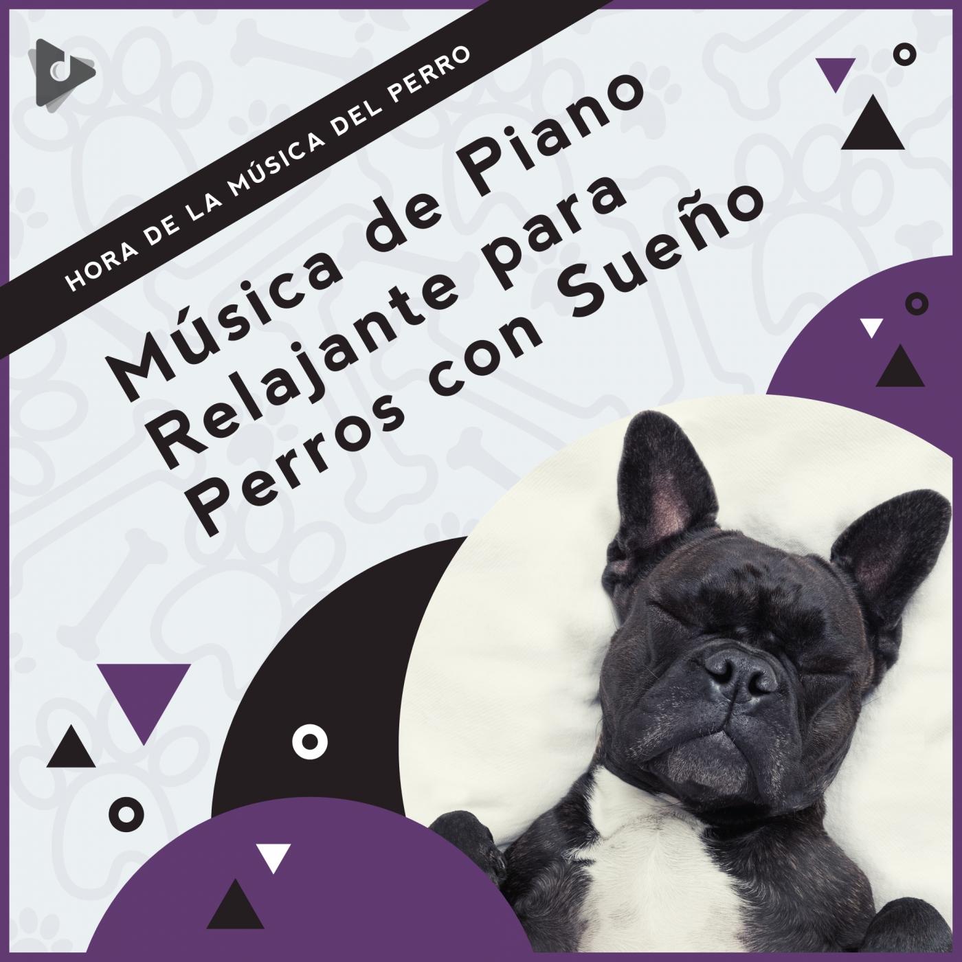 Música de Piano Relajante para Perros con Sueño