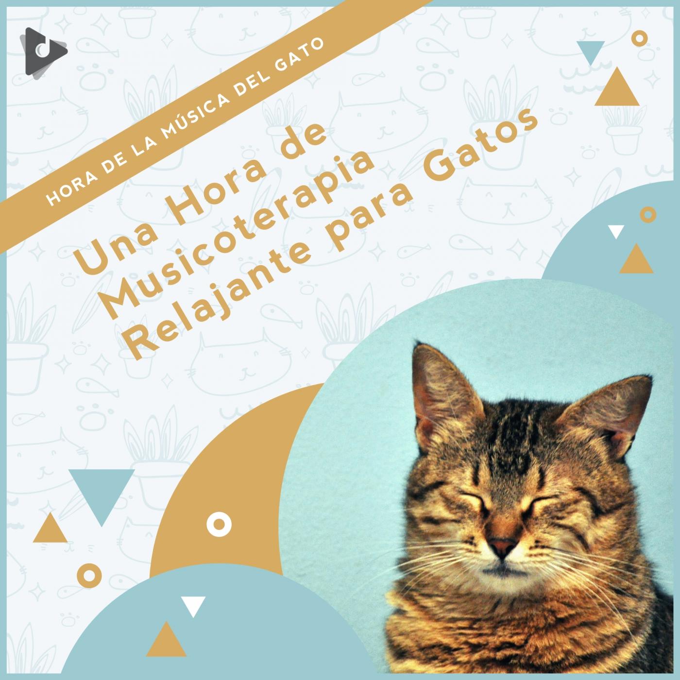 Una Hora de Musicoterapia Relajante para Gatos