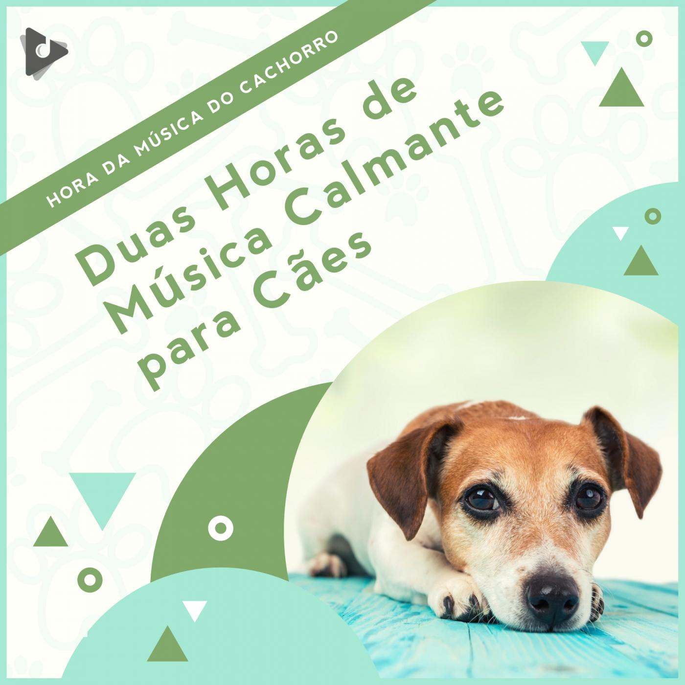 Duas Horas de Música Calmante para Cães
