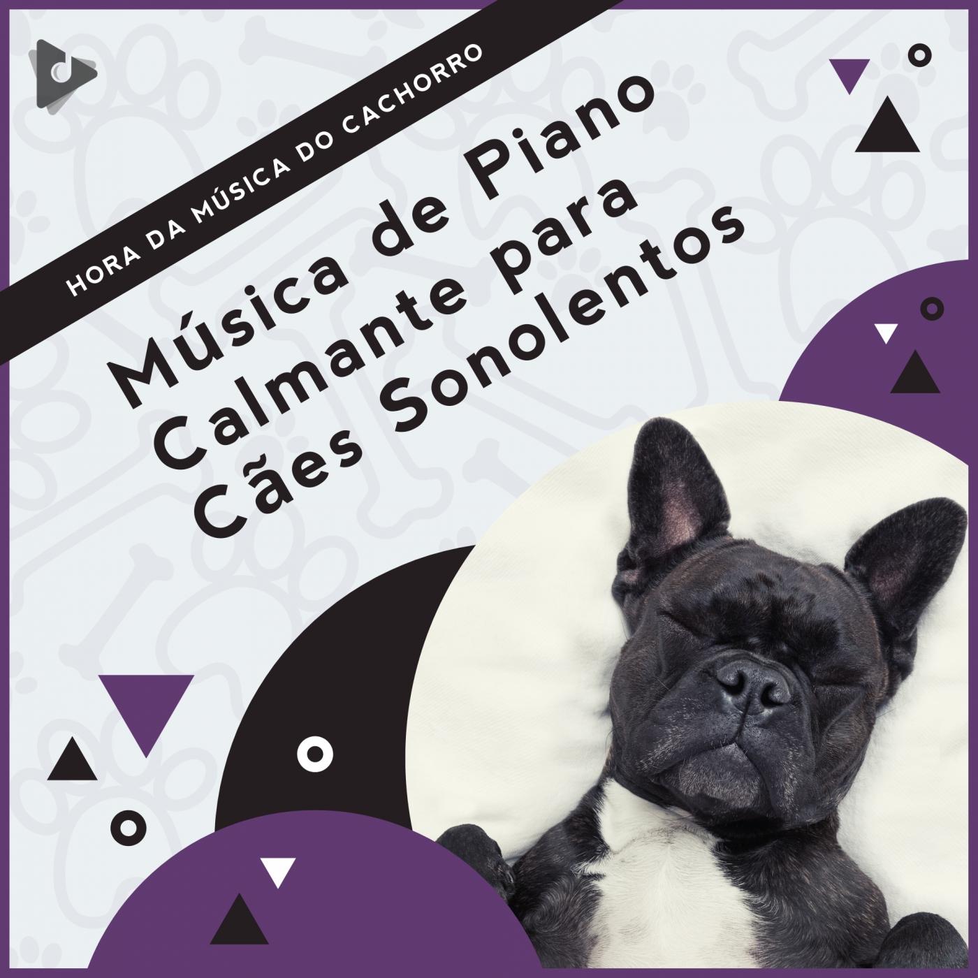Música de Piano Calmante para Cães Sonolentos