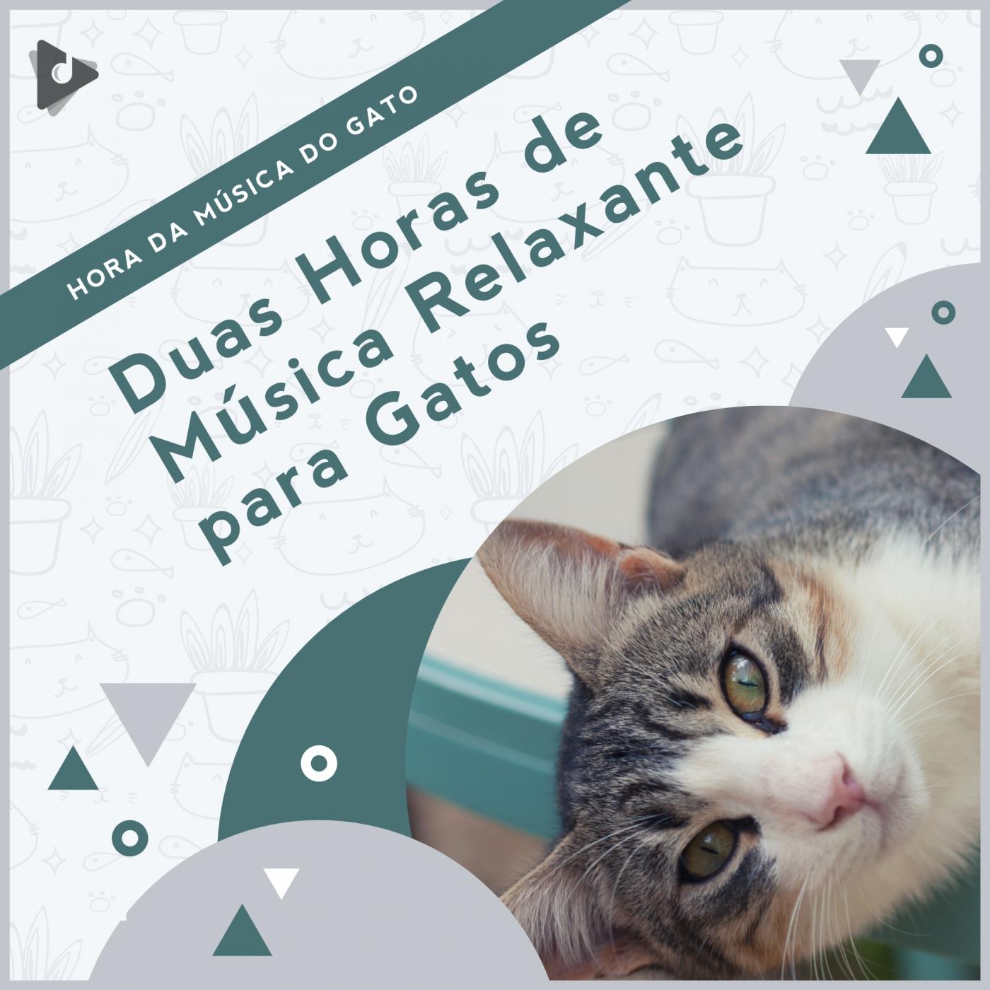 Duas Horas de Música Relaxante para Gatos